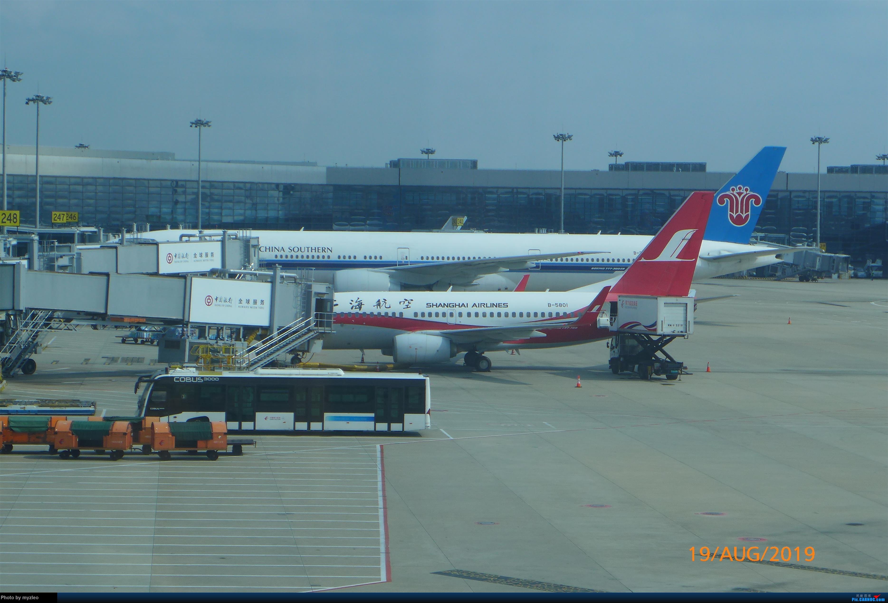 Re:[原创]【myzleo的游记5.1】梦圆一九(1)首搭国航359,北京城里到处走 BOEING 737-700 B-5801 中国上海虹桥国际机场