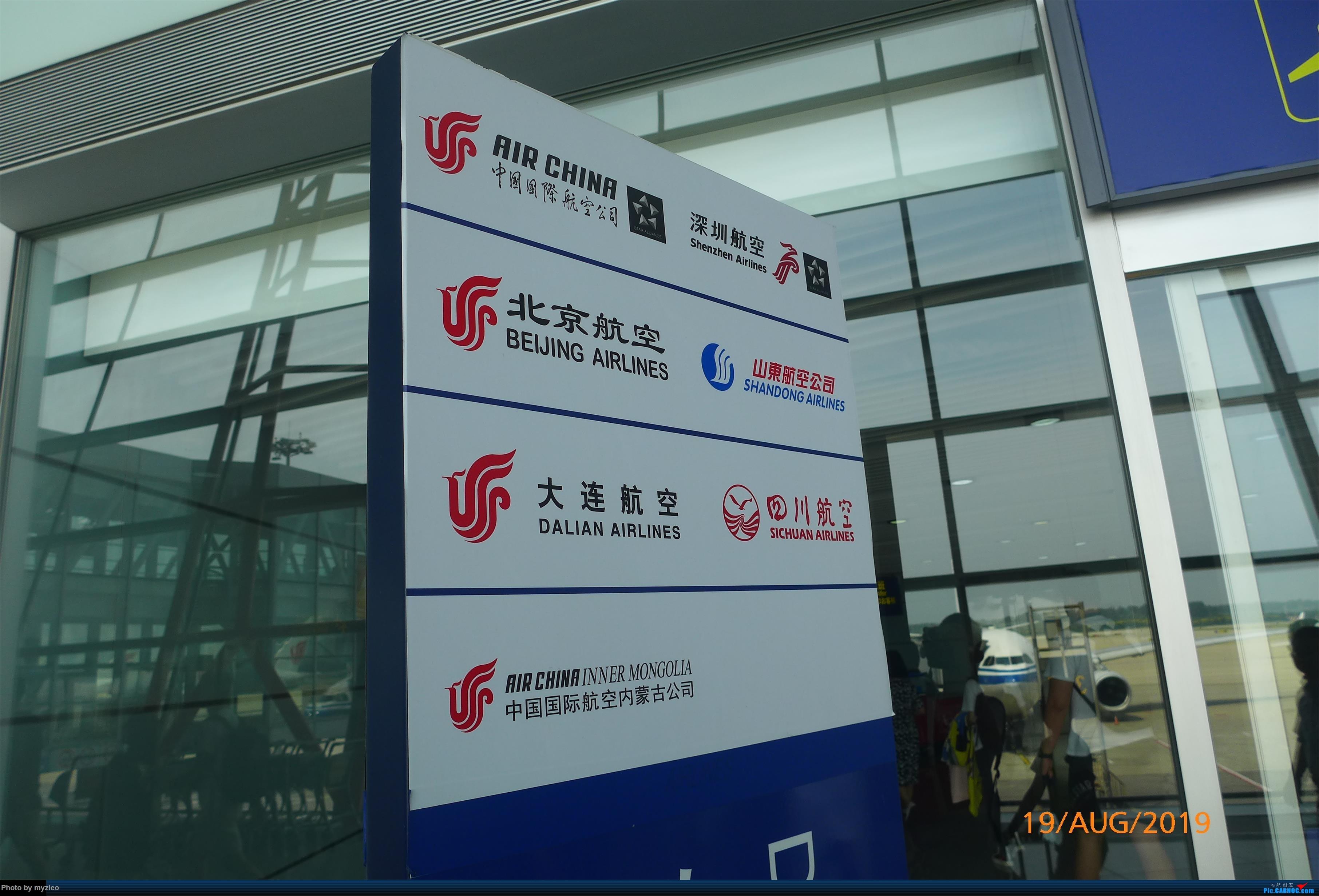 Re:[原创]【myzleo的游记5.1】梦圆一九(1)首搭国航359,北京城里到处走 AIRBUS A330-300 B-5913 中国北京首都国际机场 中国北京首都国际机场