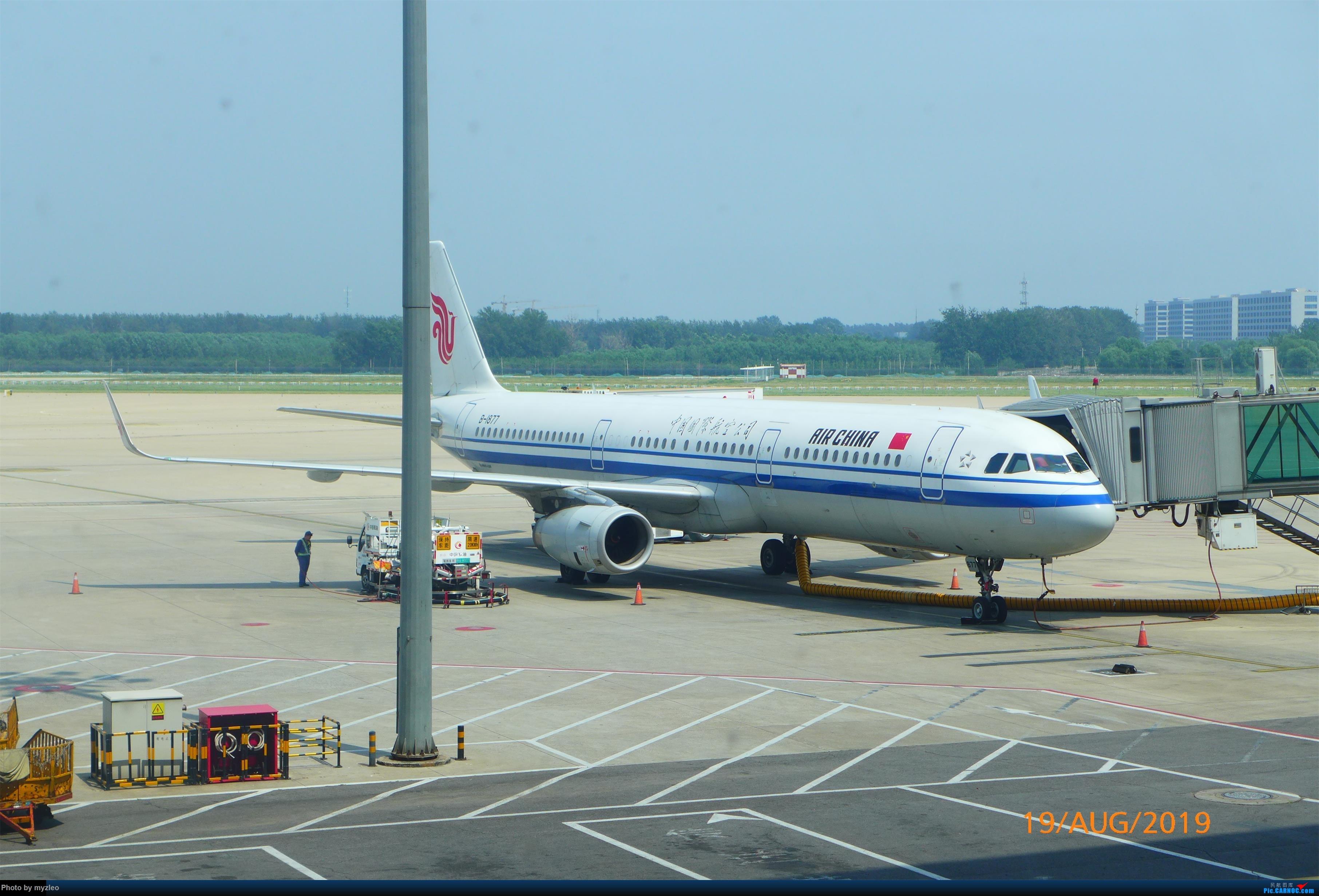 Re:[原创]【myzleo的游记5.1】梦圆一九(1)首搭国航359,北京城里到处走 AIRBUS A321-200 B-1877 中国北京首都国际机场
