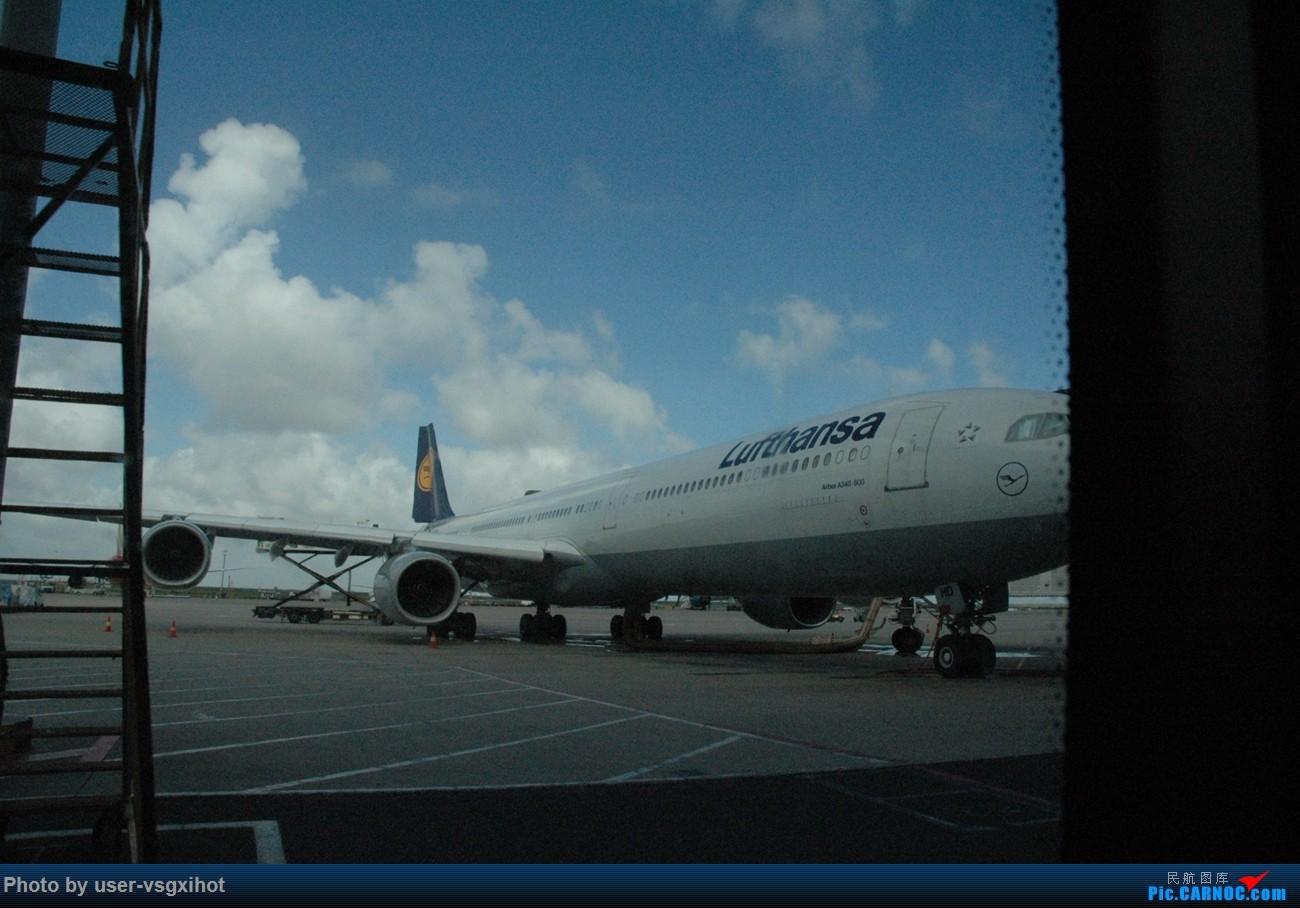 Re:[原创]【Hans游记(6)出埃及记】(PART 1)经阿航转机初识埃及,40度高温下の开罗一日游 AIRBUS A340-300 D-AIHD 中国上海浦东国际机场