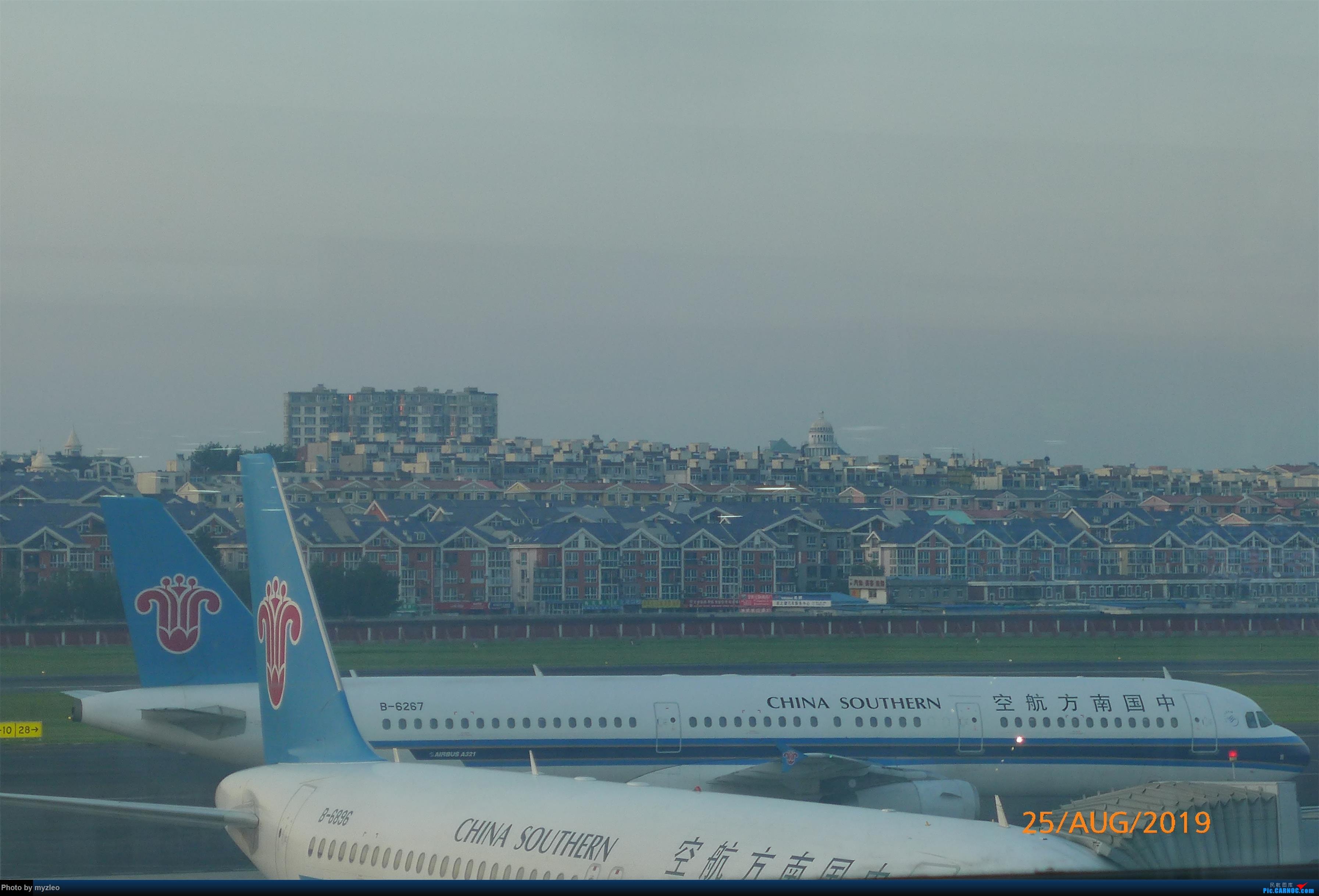 Re:[原创]【myzleo的游记5.3】在大连各景点穿梭不停,坐东航319返回上海 AIRBUS A321-200 B-6267 中国大连国际机场