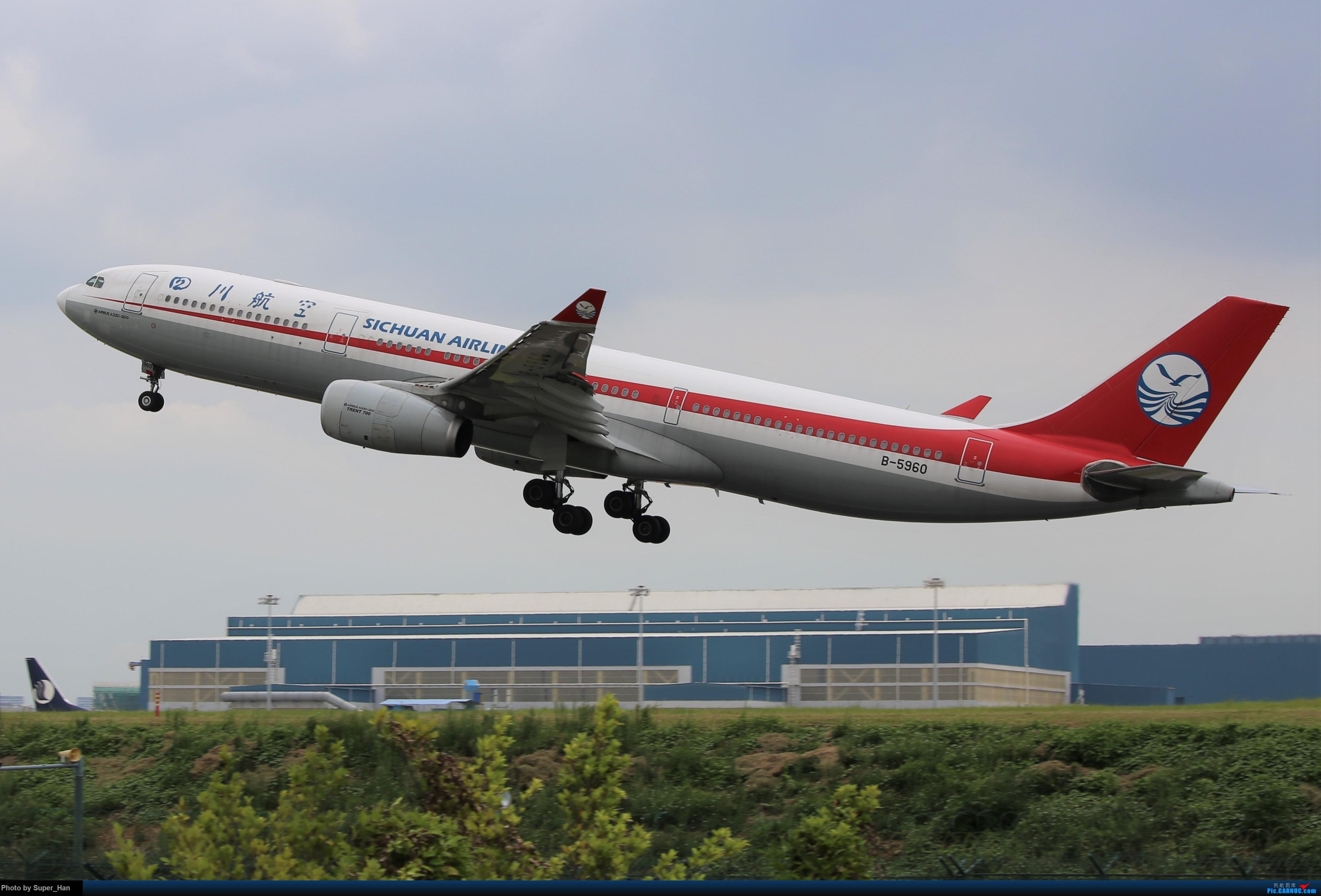 Re:[原创]0831初访XMN AIRBUS A330-300 B-5960 中国厦门高崎国际机场