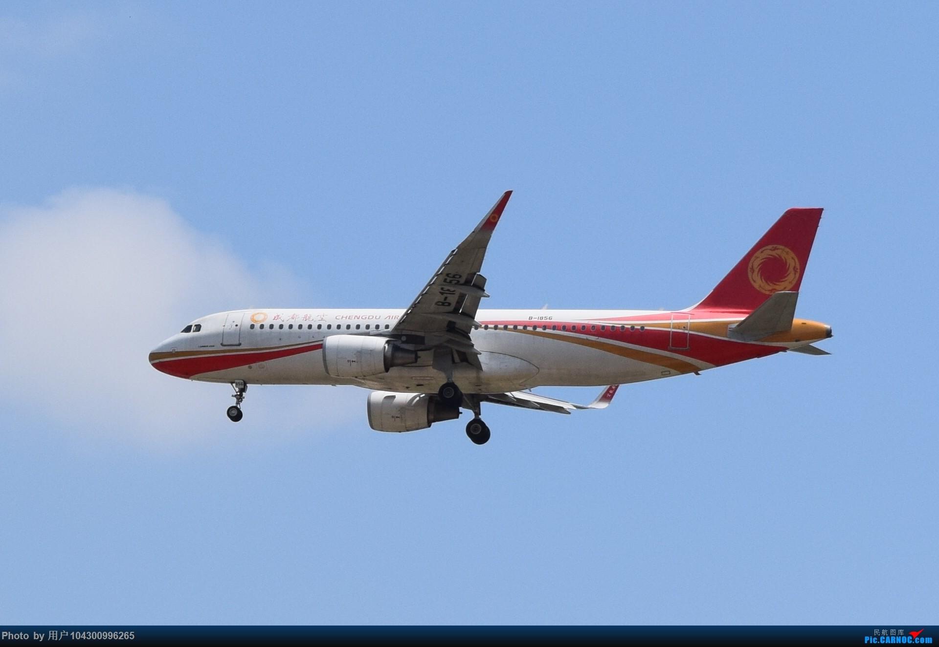 Re:[原创]贵阳龙洞堡杂图一览 AIRBUS A320-200 B-1856 中国贵阳龙洞堡国际机场