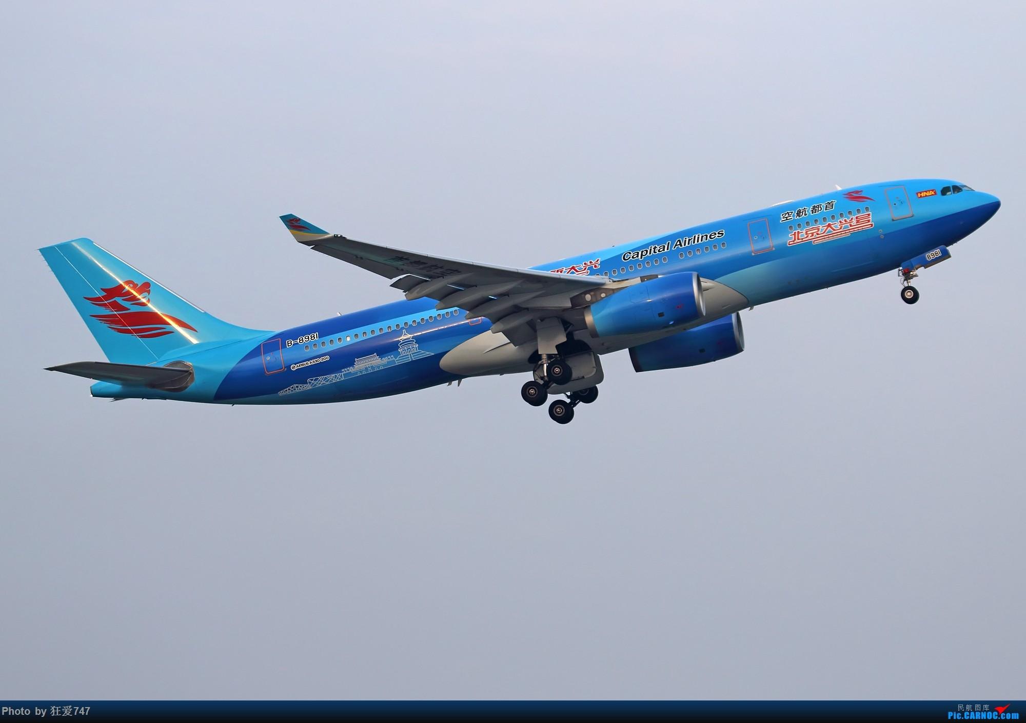 """[原创]一张图:首都航空""""大兴号""""彩绘 AIRBUS A330-200 B-8981 中国北京首都国际机场"""