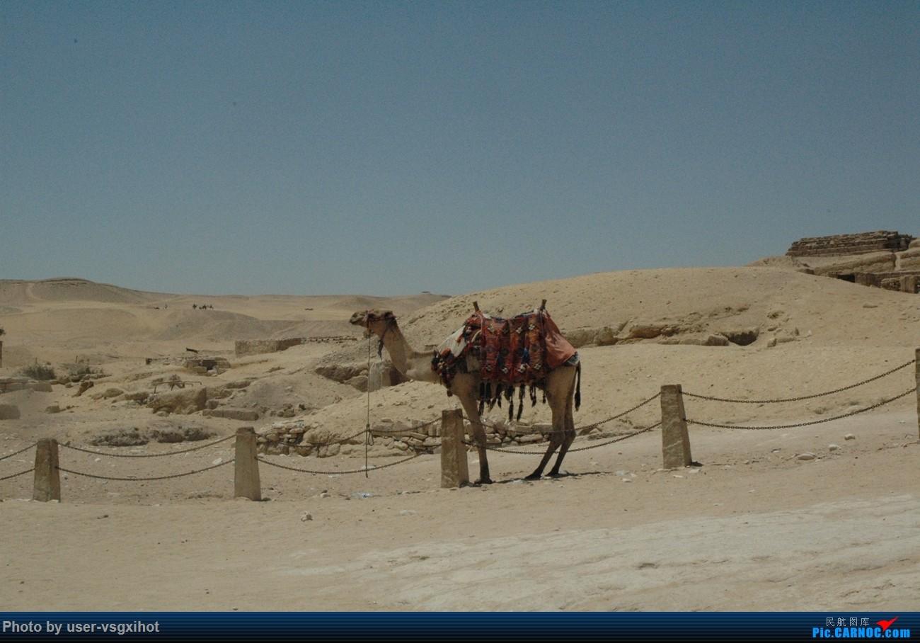 Re:[原创]【Hans游记(6)出埃及记】(PART 1)经阿航转机初识埃及,40度高温下の开罗一日游