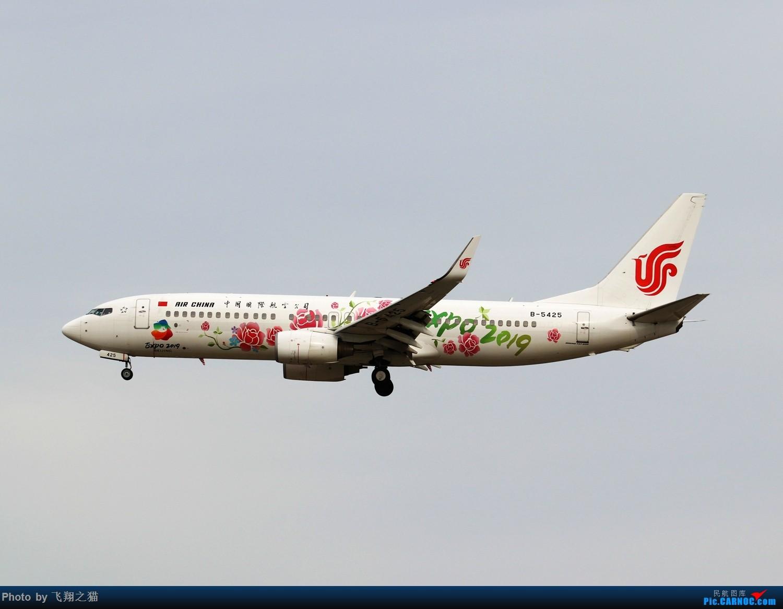 Re:[原创]飞翔之猫中秋在帝都拍机 BOEING 737-800 B-5425 北京首都机场
