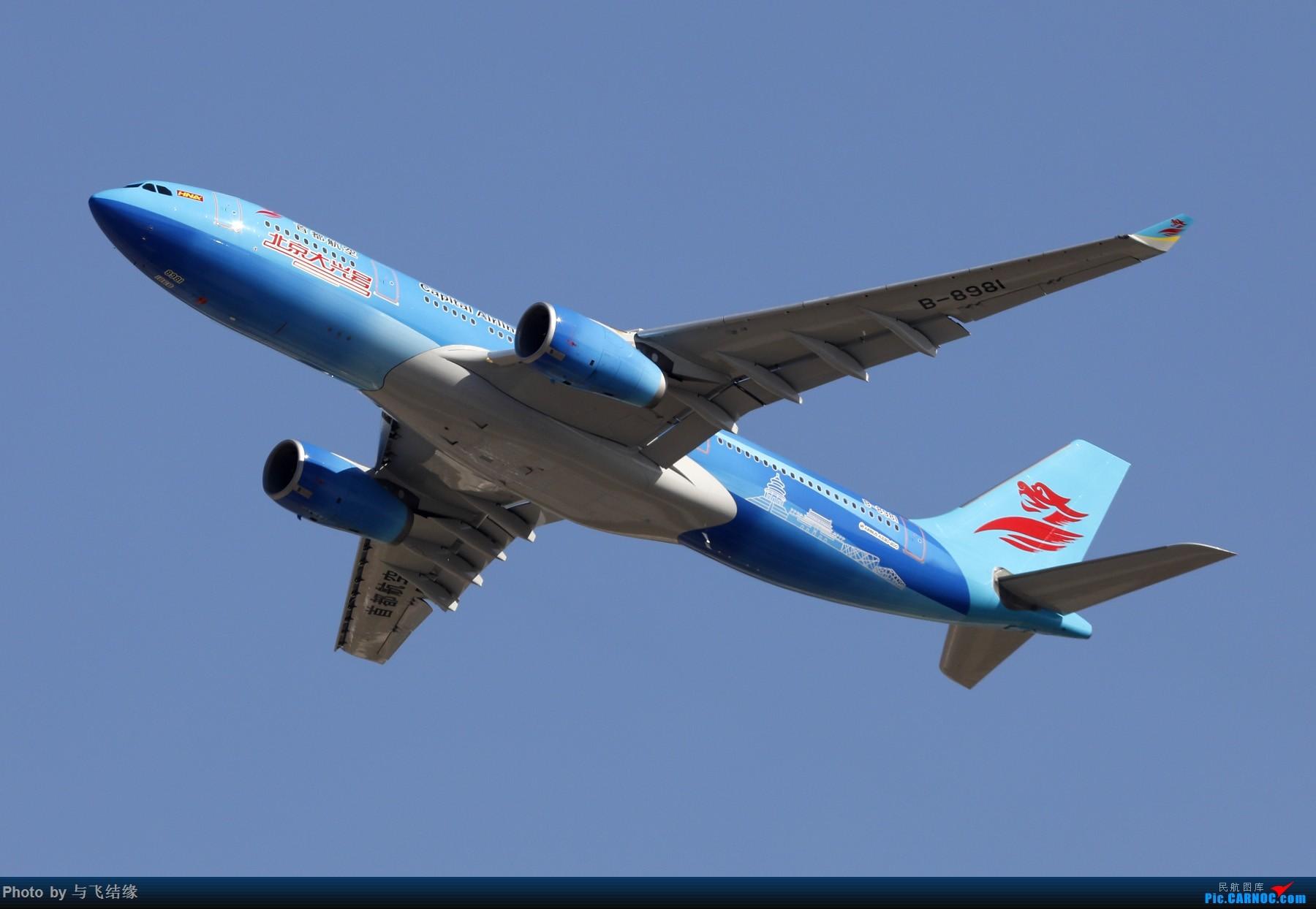 """Re:[原创]一张图:首都航空""""大兴号""""彩绘 AIRBUS A330-200 B-8981 中国北京首都国际机场"""