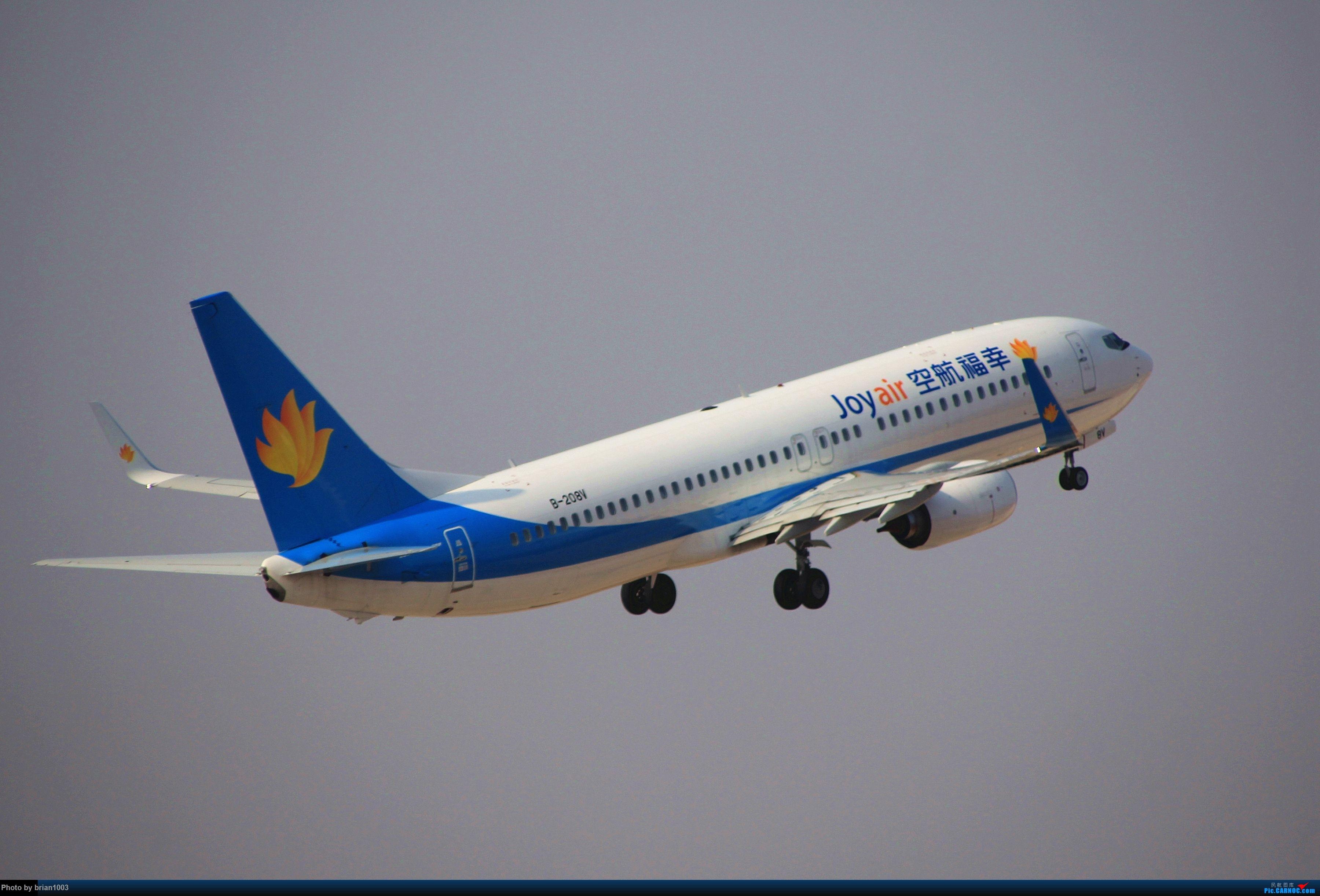 Re:[原创]WUH武汉天河机场拍机之新航季来的海航333和幸福的738 BOEING 737-800 B-208V 中国武汉天河国际机场