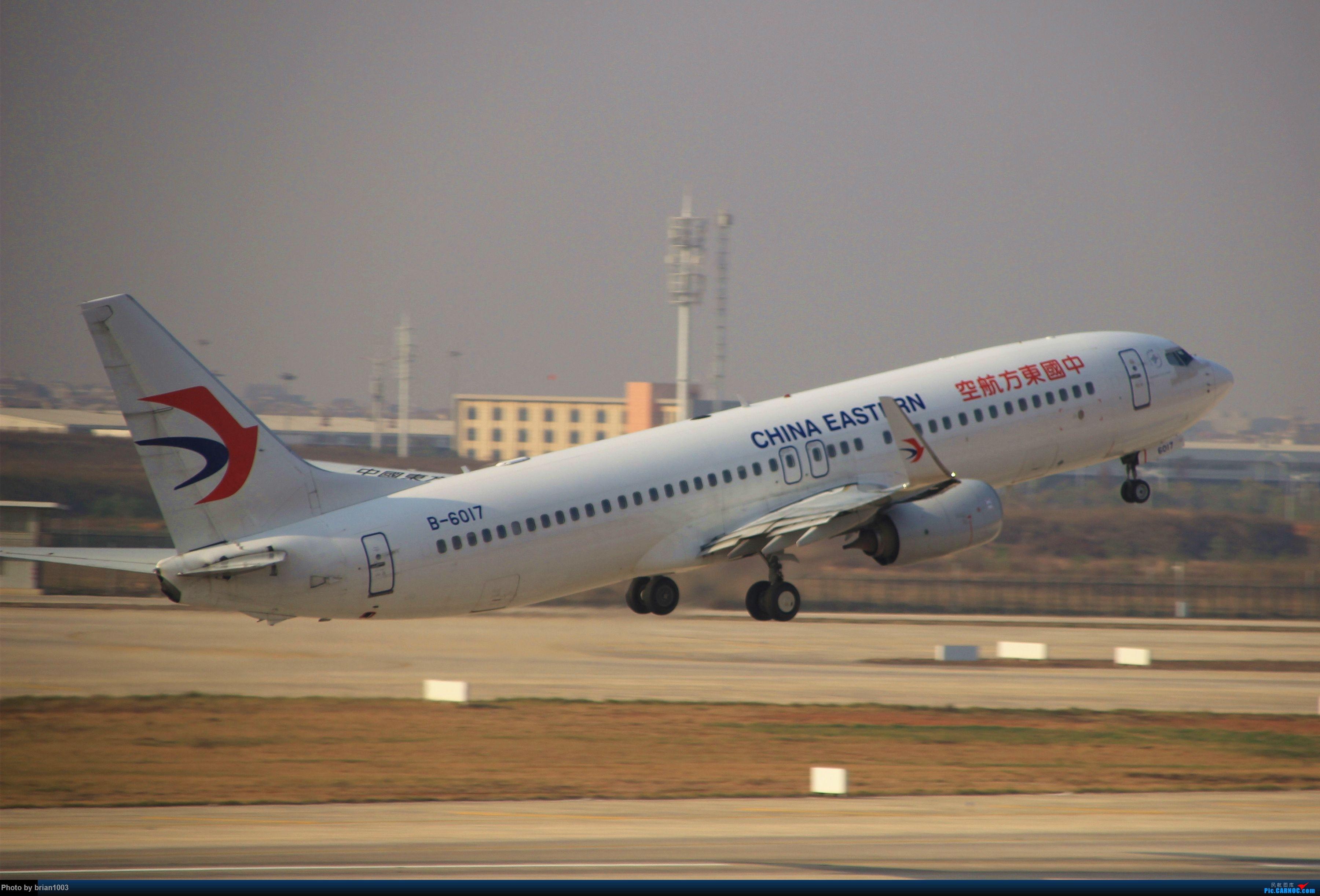 Re:[原创]WUH武汉天河机场拍机之新航季来的海航333和幸福的738 BOEING 737-800 B-6017 中国武汉天河国际机场