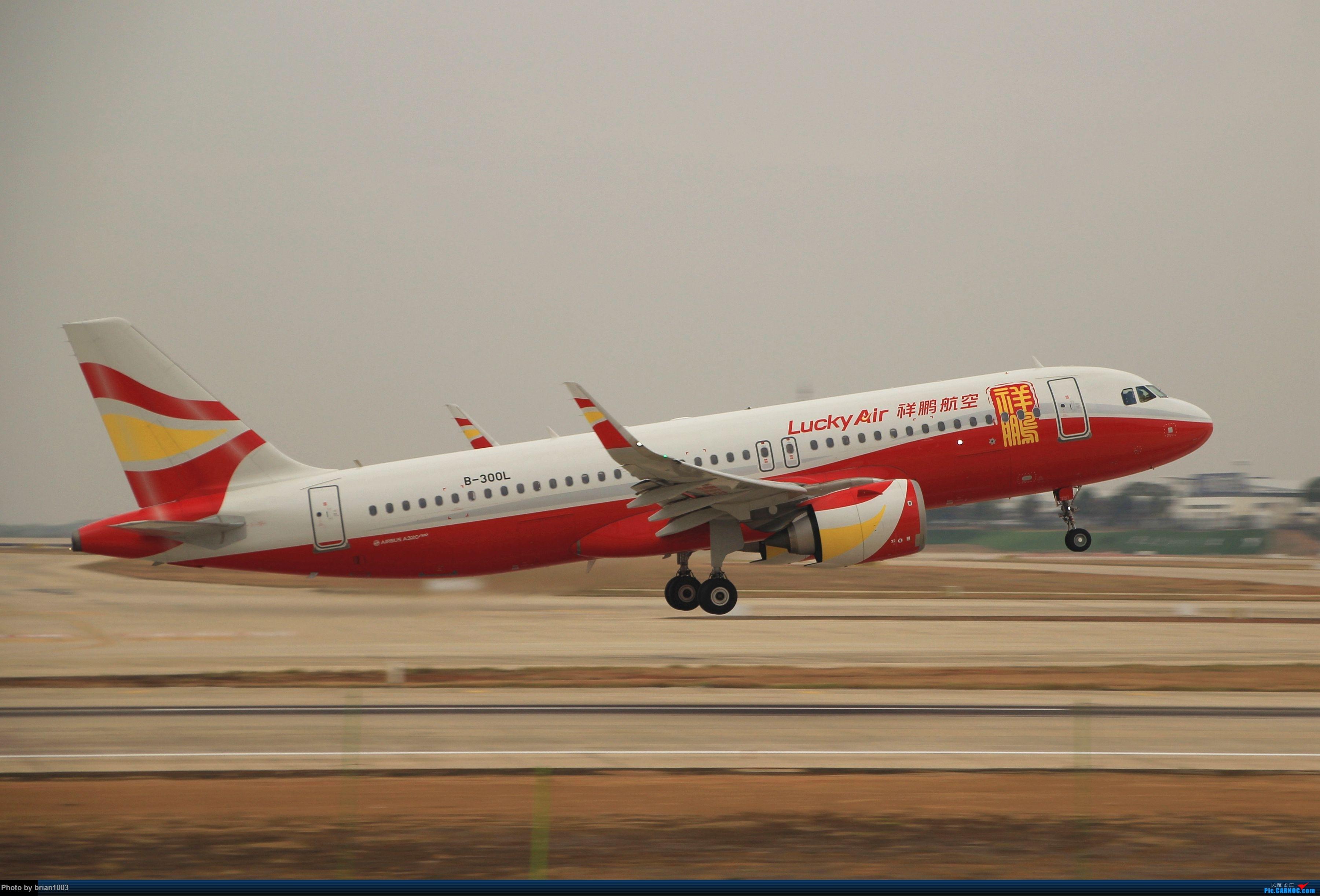 Re:[原创]WUH武汉天河机场拍机之新航季来的海航333和幸福的738 AIRBUS A320NEO B-300L 中国武汉天河国际机场