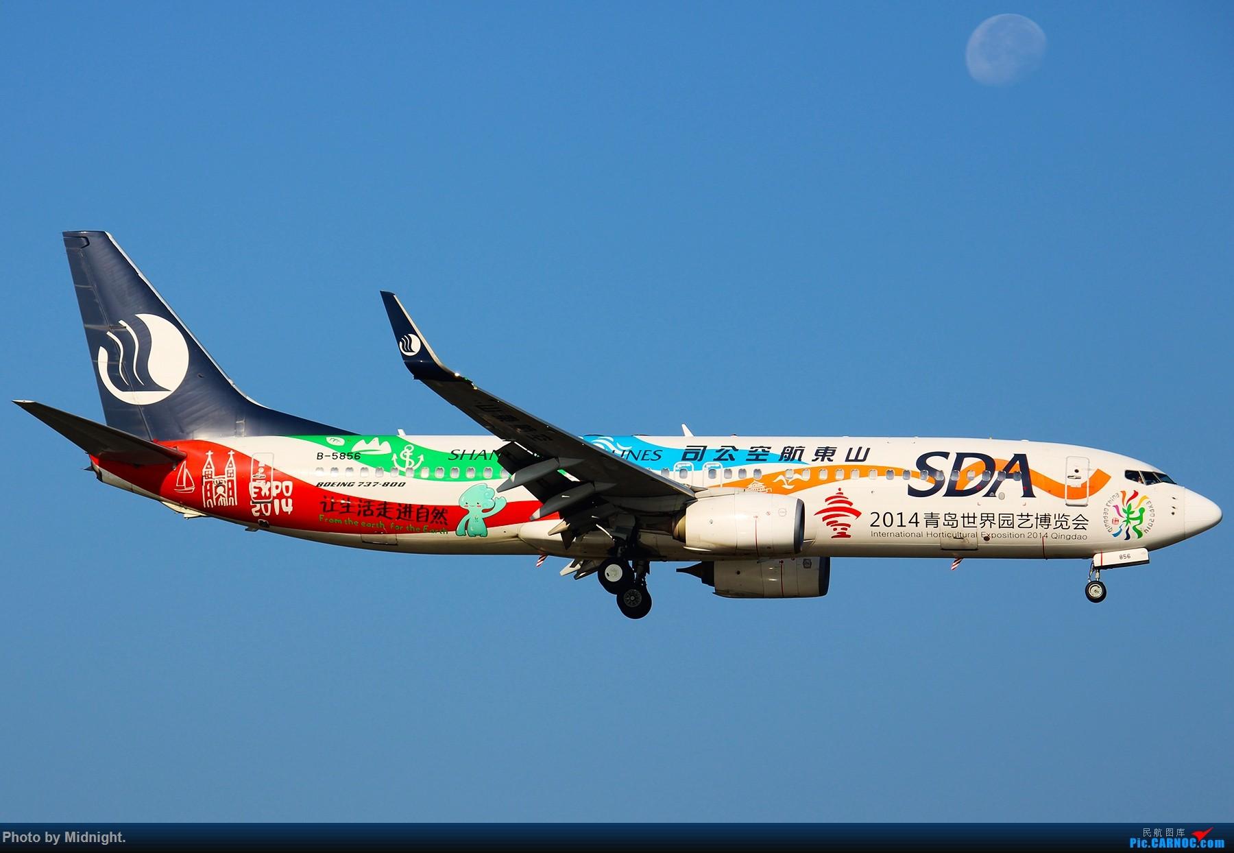Re:[原创]「全是大渣片」超冷门机场WUS BOEING 737-800 B-5856 中国武夷山机场