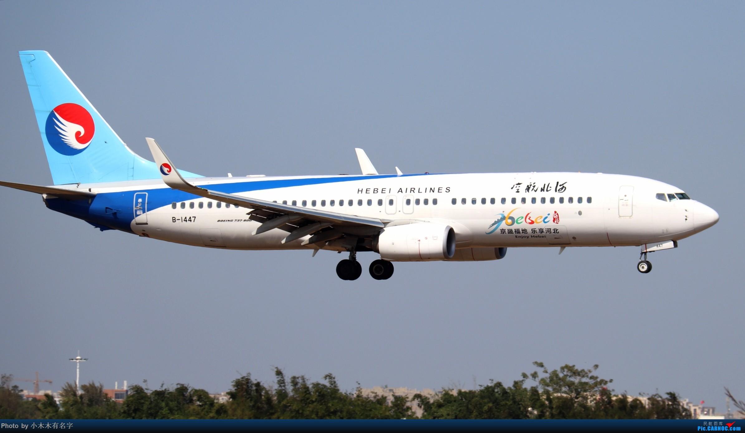 Re:[原创]2019冬天的海口美兰 BOEING 737-800 B-1447 中国海口美兰国际机场