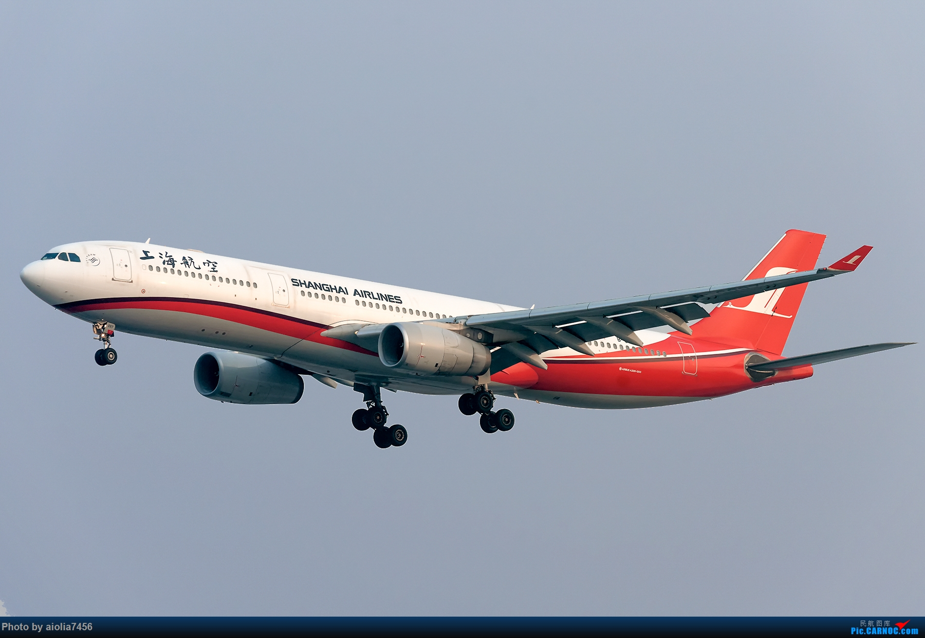 Re:[原创]【霸都打机队】上海培训时顺带虹桥扫货,结果遇到水泥天 AIRBUS A330-300 B-6097 中国上海虹桥国际机场