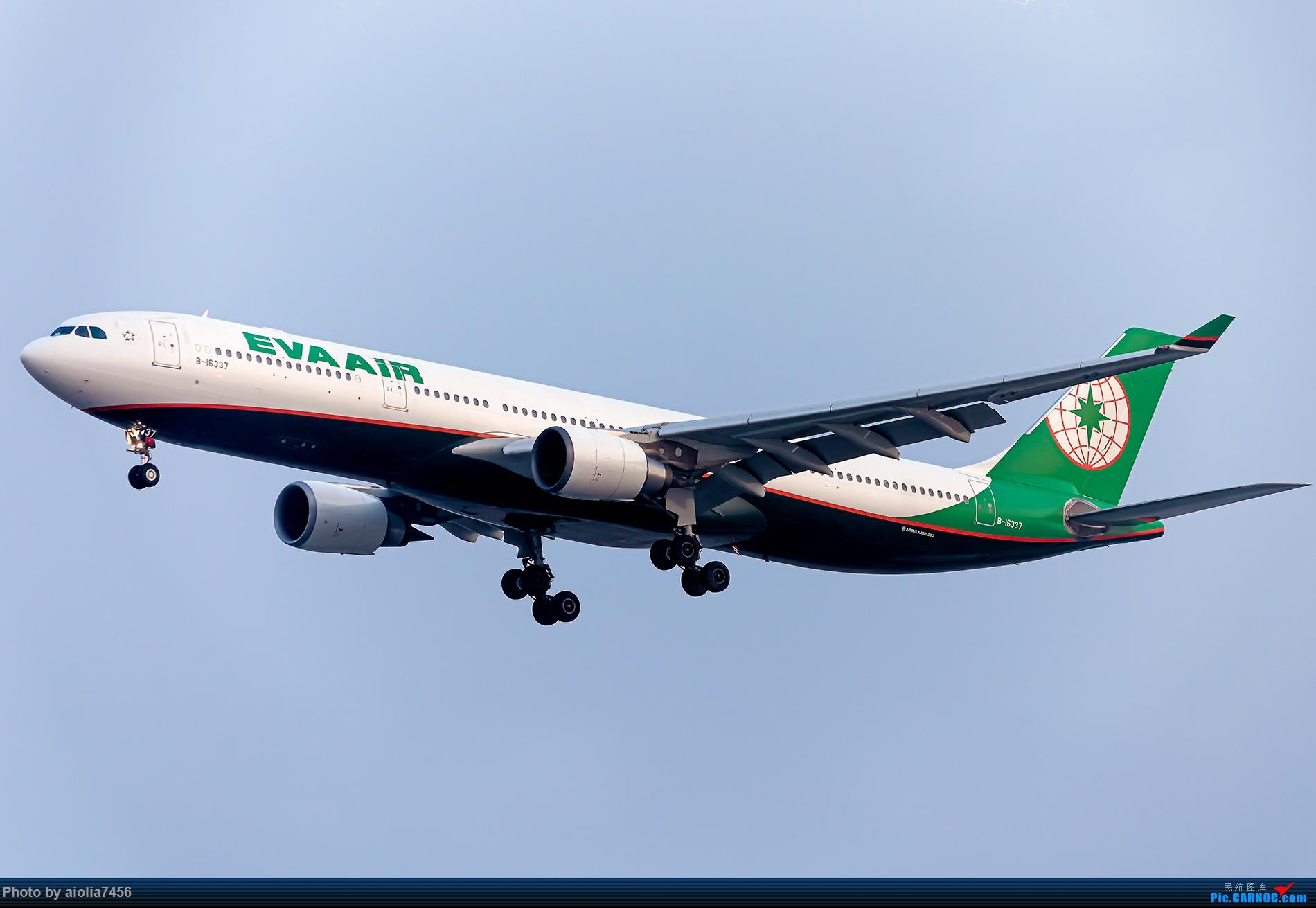 Re:[原创]【霸都打机队】上海培训时顺带虹桥扫货,结果遇到水泥天 AIRBUS A330-300 B-16337 中国上海虹桥国际机场