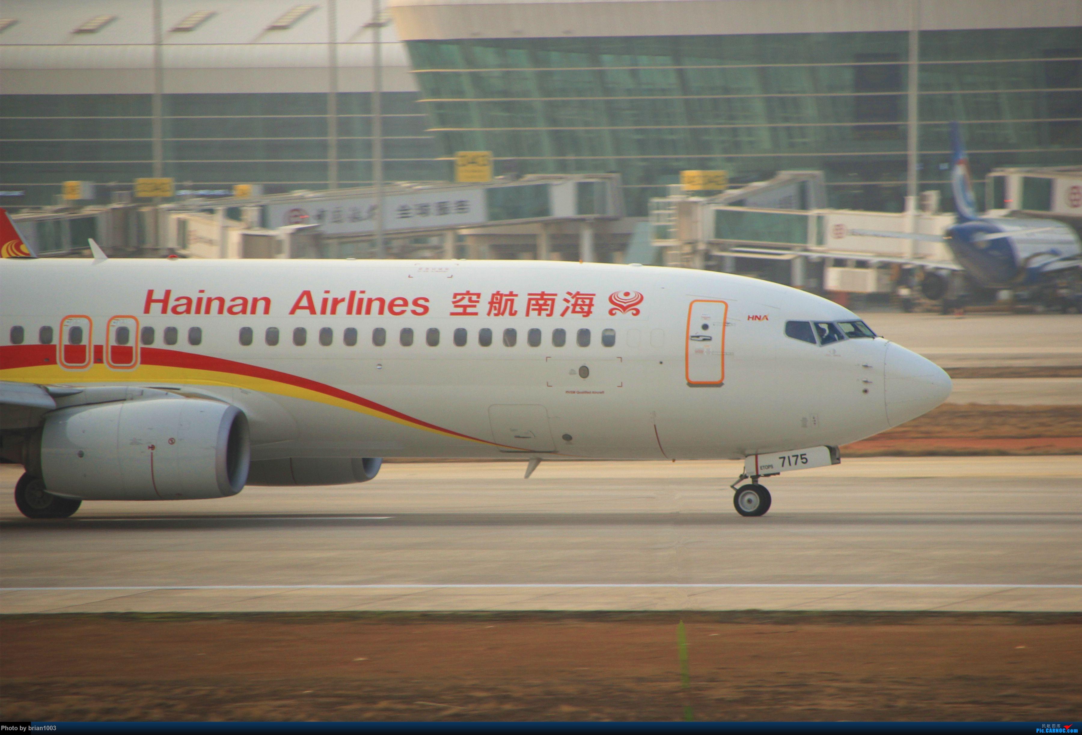 Re:[原创]WUH天河机场拍机之2019最后一拍 BOEING 737-800 B-7175 中国武汉天河国际机场