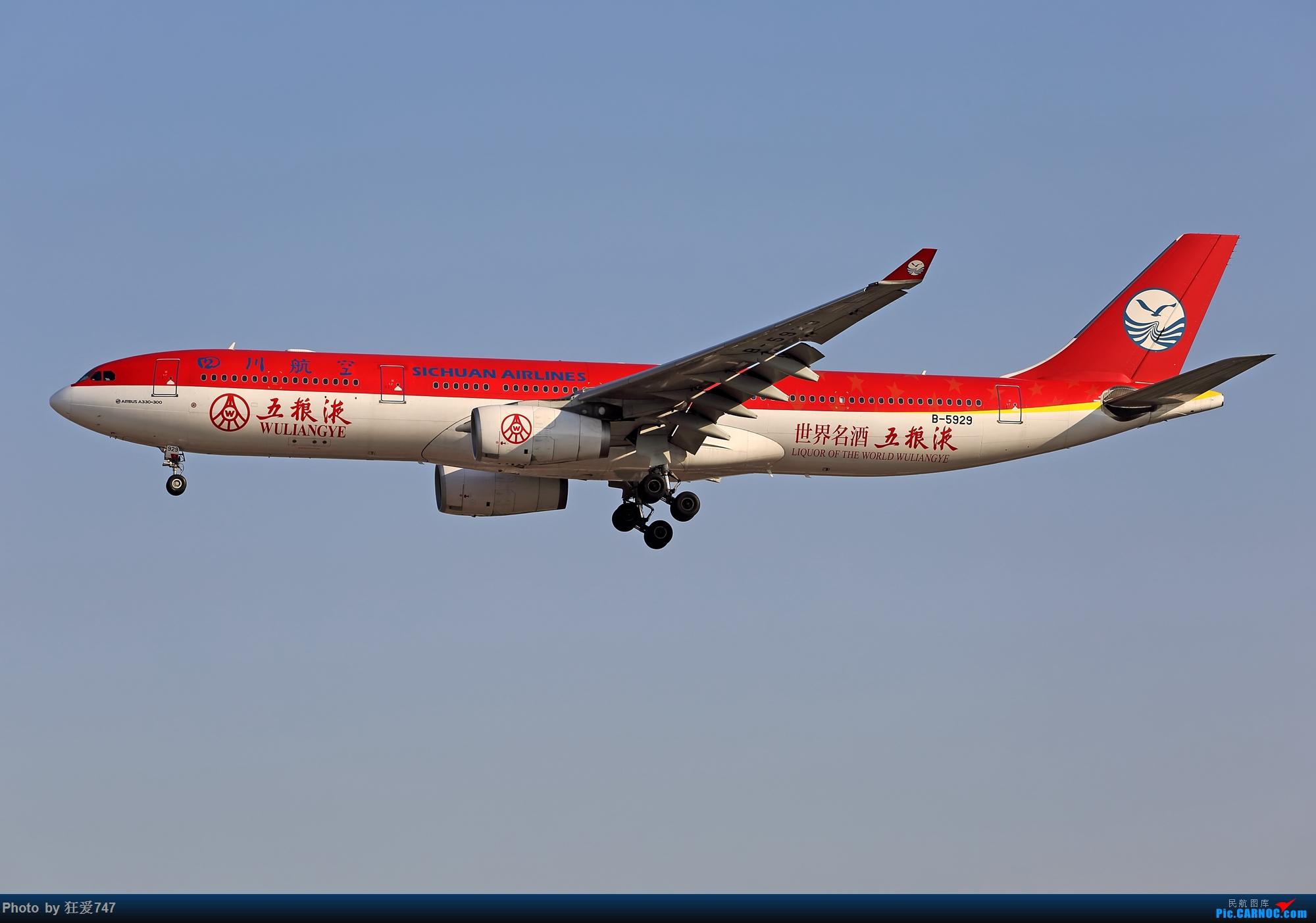 [原创]2020年新年第一拍,祝大家新年快乐! AIRBUS A330-300 B-5929 中国北京首都国际机场