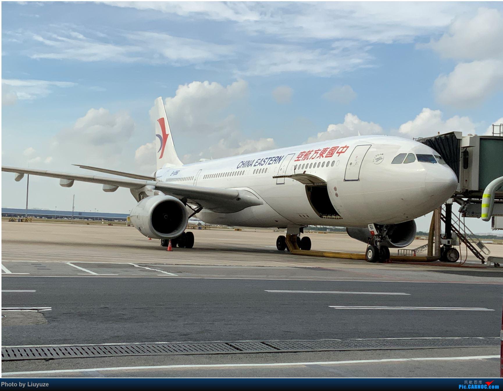 济州岛之游 AIRBUS A330-200 B-5961 中国上海浦东国际机场