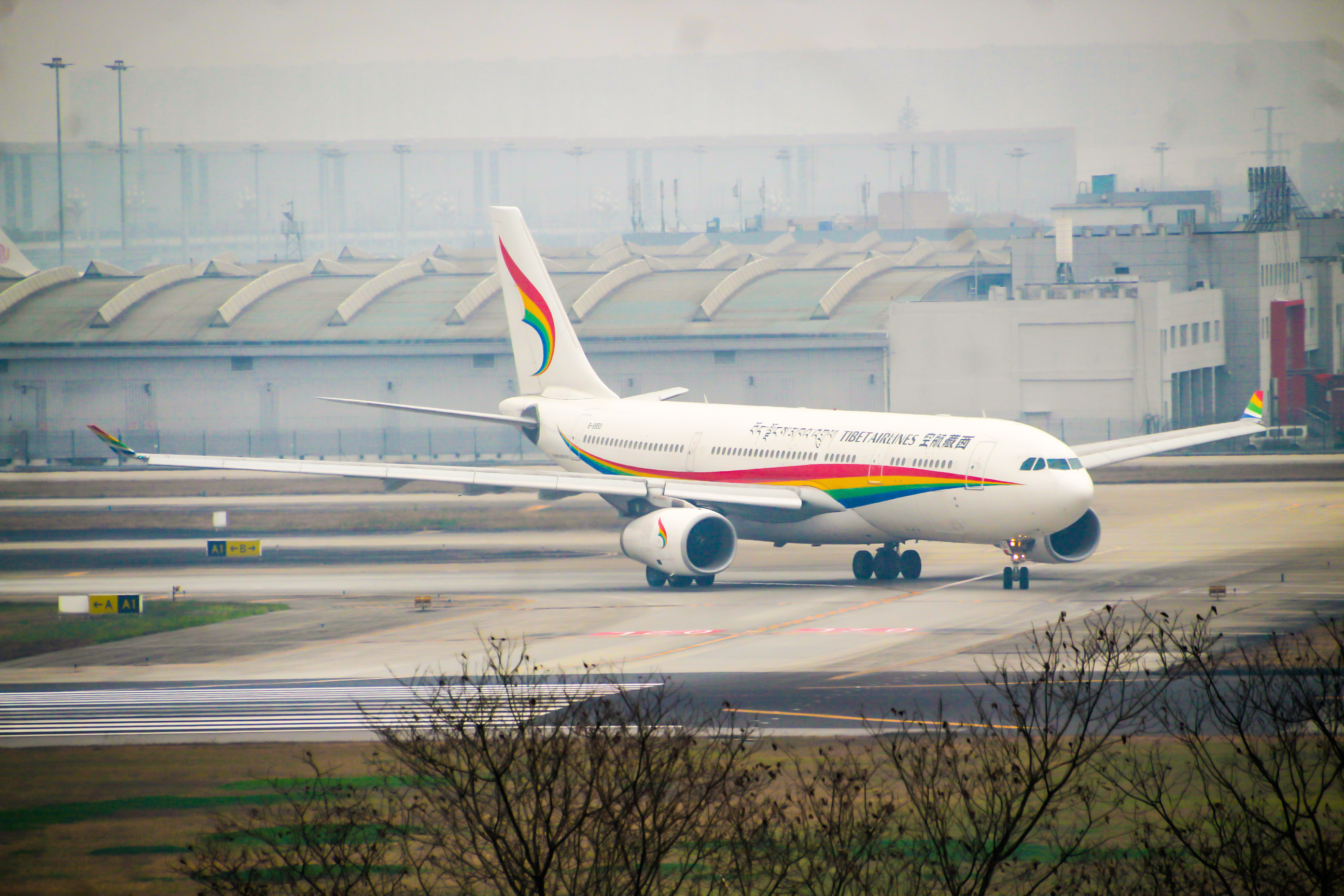 Re:CTU水泥天拍机,验证烂天好货的铁律 AIRBUS A330-200 B-8950 中国成都双流国际机场