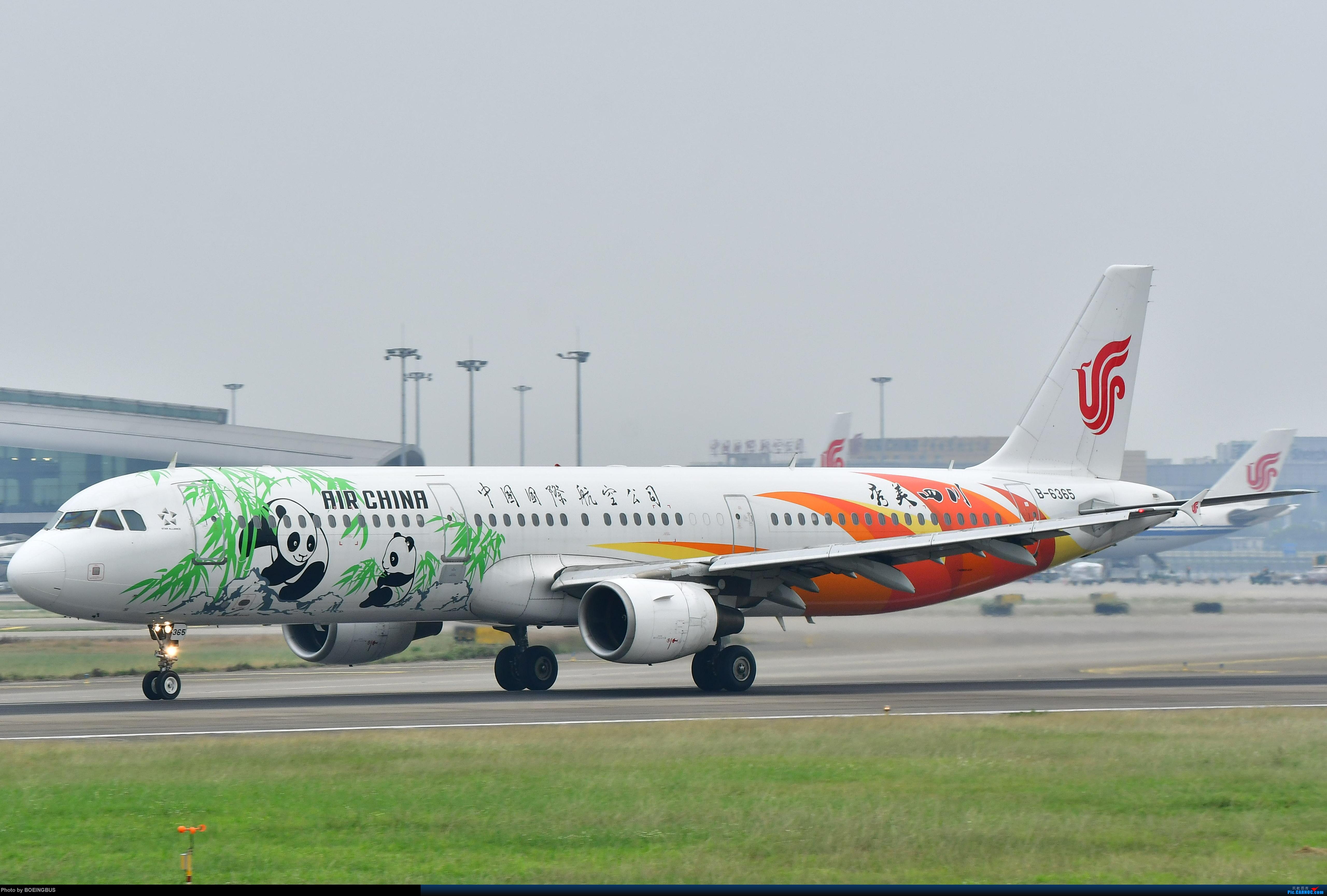 Re:[原创]祝各位飞友新年快乐! AIRBUS A321-200 B-6365 中国广州白云国际机场