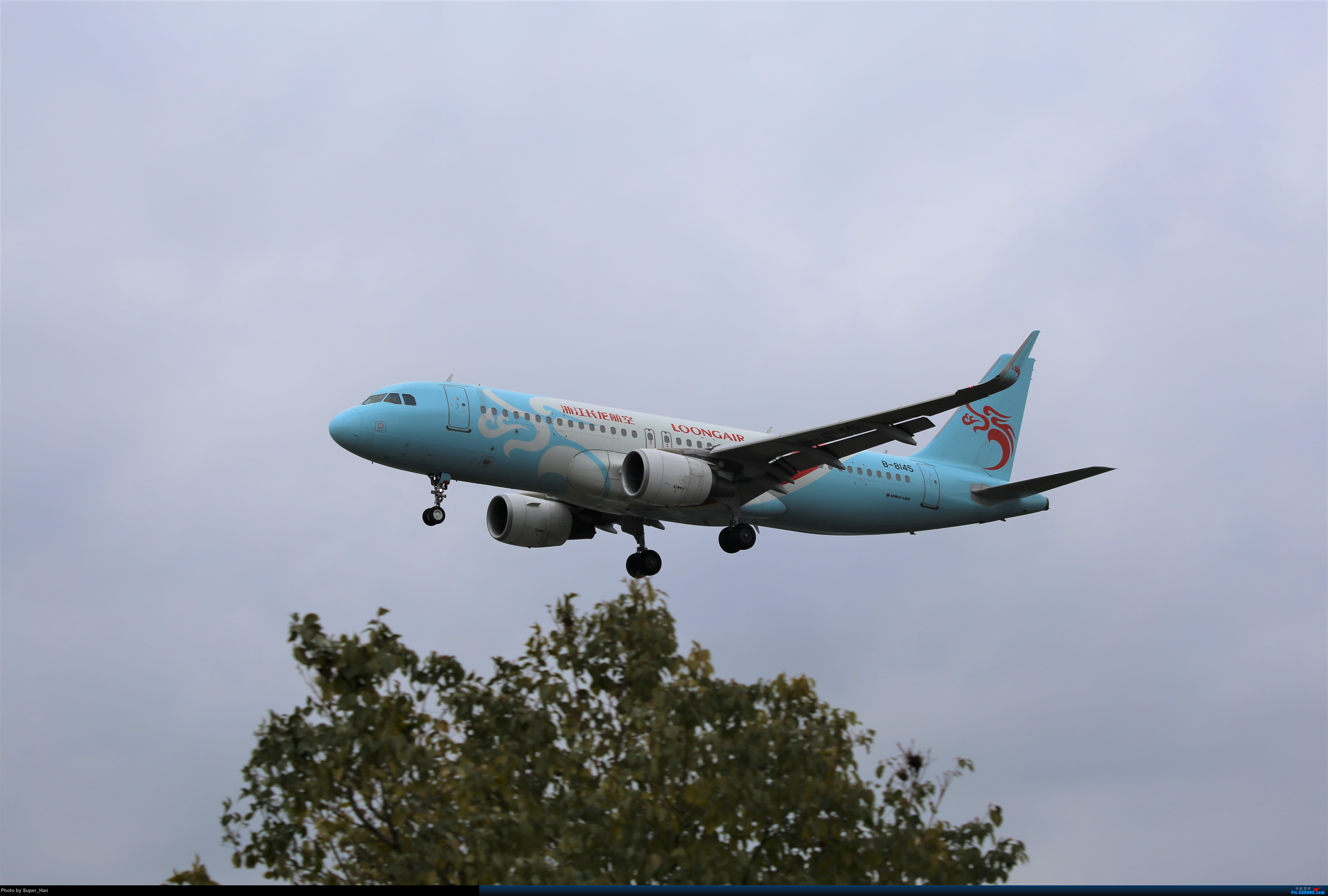 Re:[原创]【杭州飞友会】大雨过后 AIRBUS A320-200 B-8145 中国杭州萧山国际机场