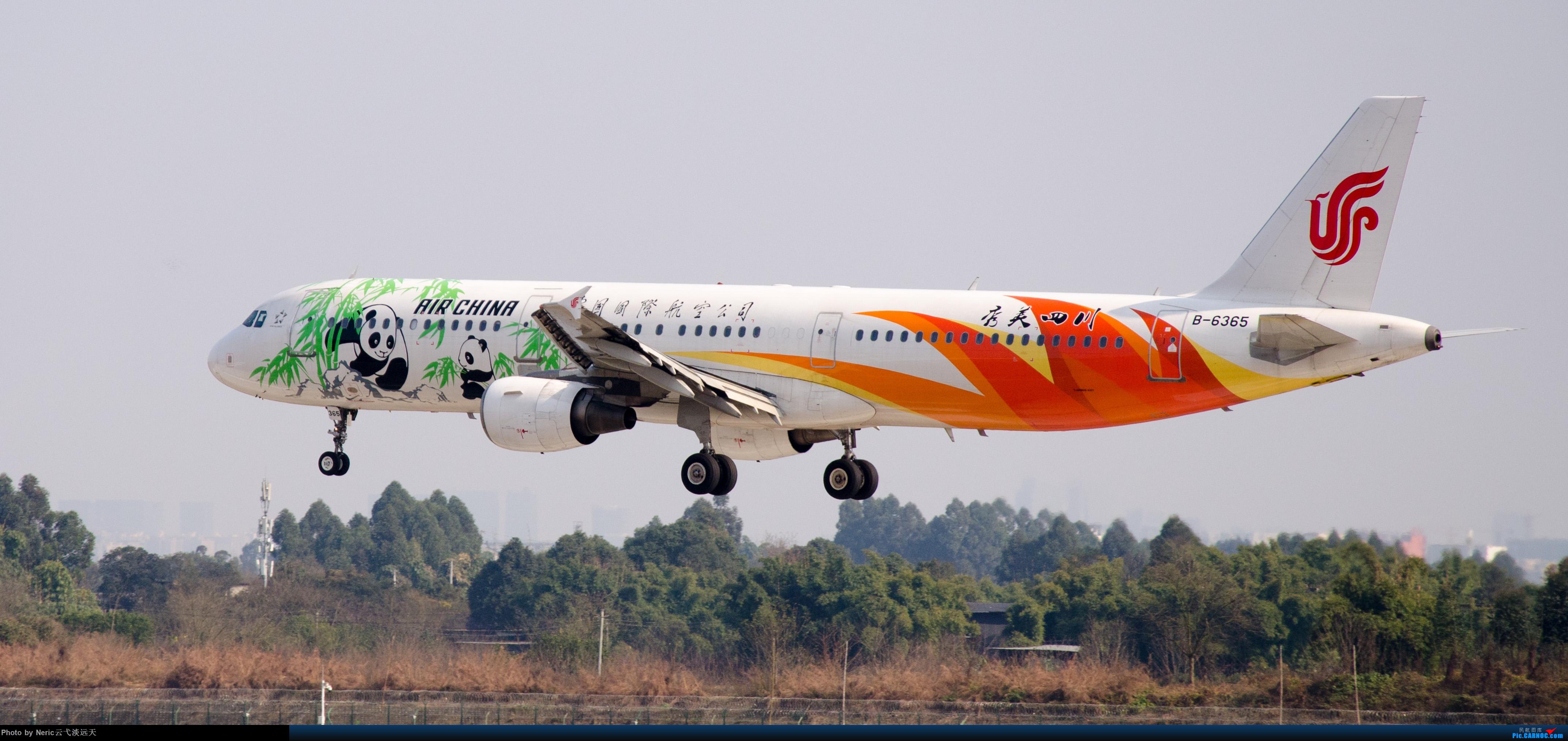 Re:[原创]双流机场日常拍机——国航秀美四川(本人很菜) AIRBUS A321-200 B-6365 中国成都双流国际机场