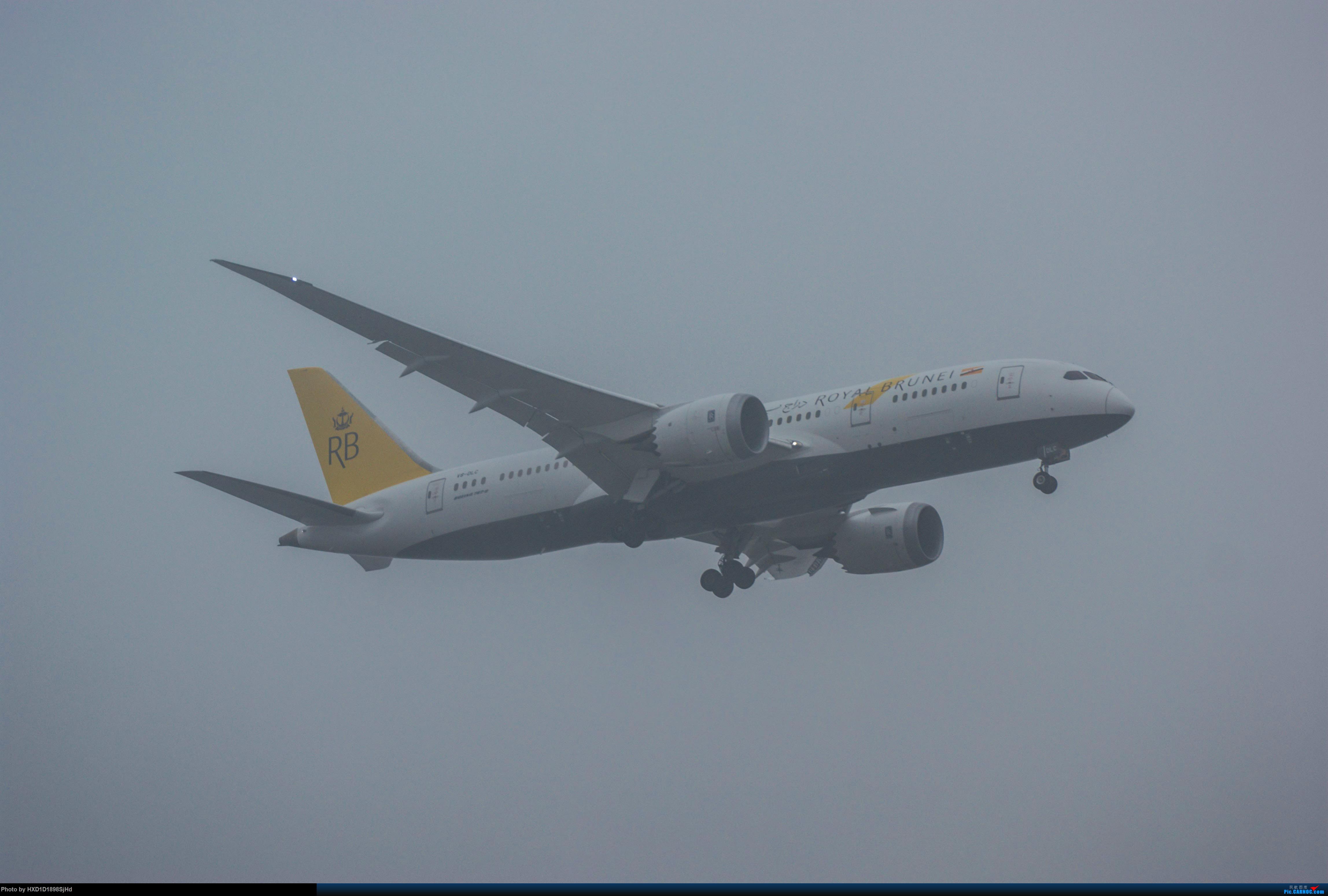 [原创]雨中降落 BOEING 787-8 V8-DLC 中国上海浦东国际机场