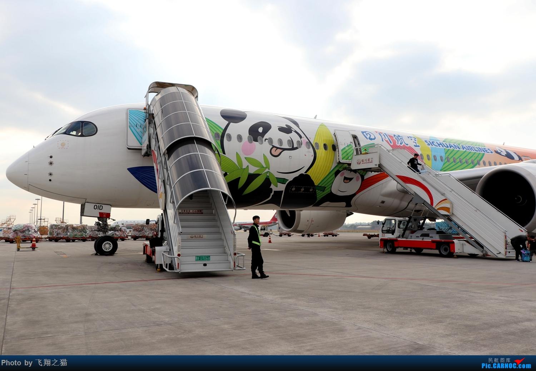 Re:[原创]我的飞行体验之川航359熊猫彩绘