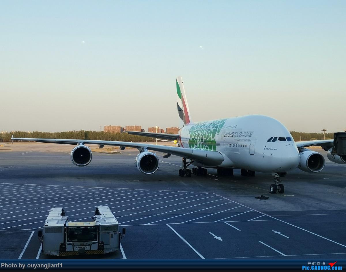 Re:[原创]终于有时间歇下来了,可以好好总结一下2019年的飞机游记了,第二段,在Jet Airways停航的当天造访印度,附带AIR INDIA之初体验! AIRBUS A380-800 A6-EEW 中国北京首都国际机场