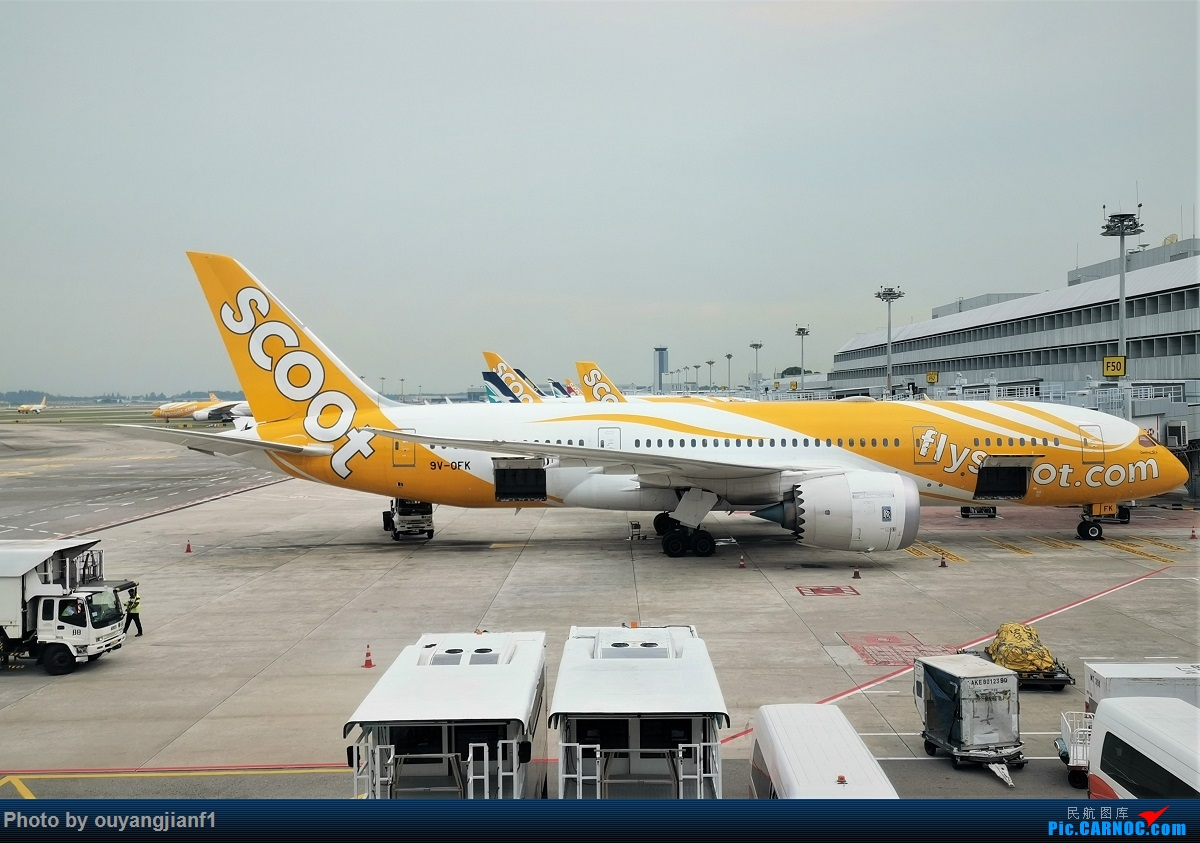 Re:[原创]终于有时间歇下来,可以好好总结一下2019年的飞机游记了,第三段,在新加坡参观星耀樟宜,在非洲穿行毛里求斯,在欧洲俯瞰大巴黎,第一次体验毛航359之旅1 BOEING 787-8 9V-QFK 新加坡樟宜机场