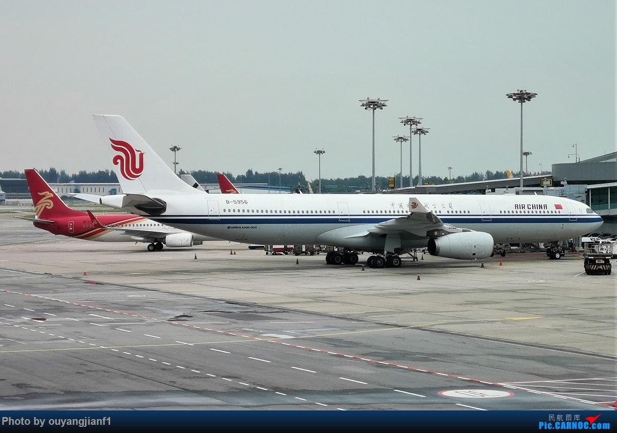 Re:[原创]终于有时间歇下来,可以好好总结一下2019年的飞机游记了,第三段,在新加坡参观星耀樟宜,在非洲穿行毛里求斯,在欧洲俯瞰大巴黎,第一次体验毛航359之旅1 AIRBUS A330-300 B-5956 新加坡樟宜机场