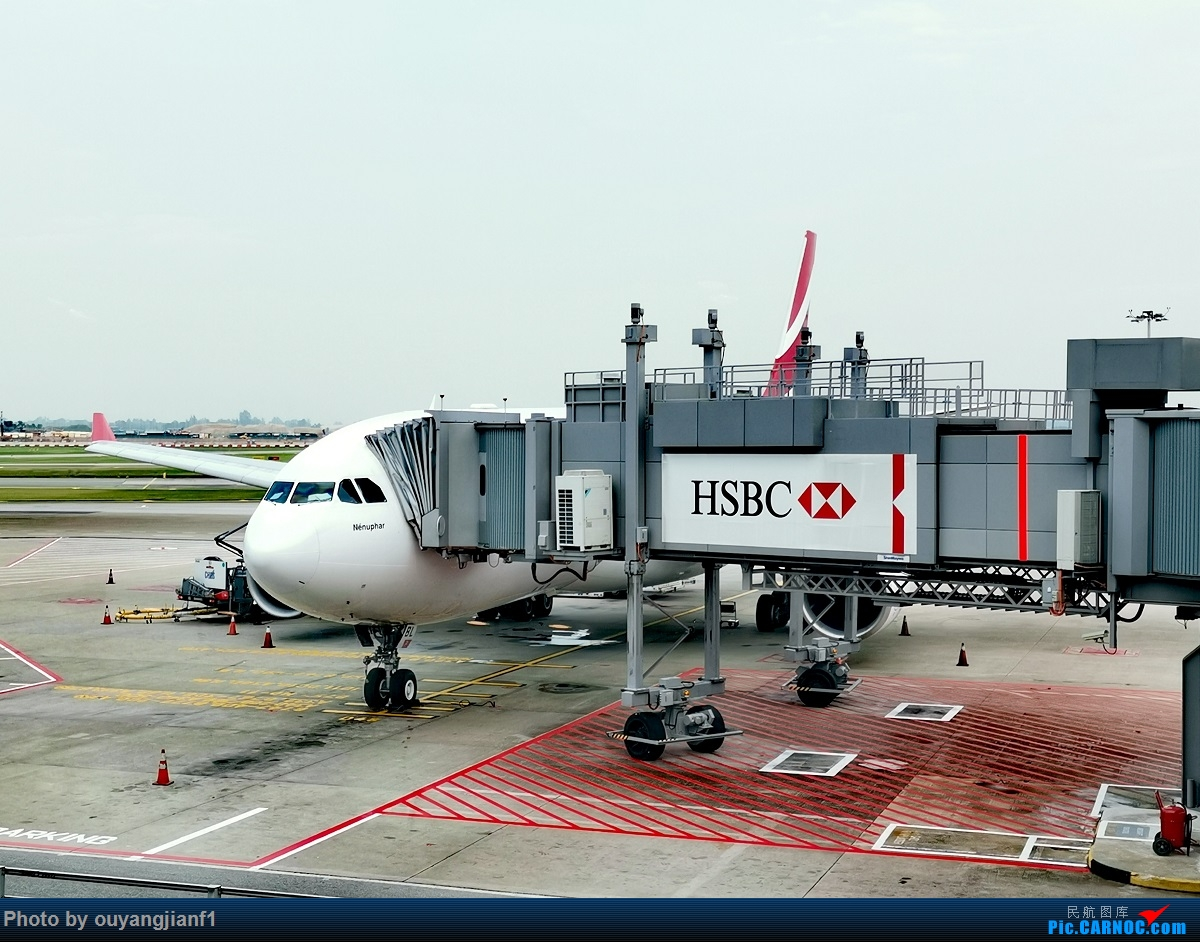 Re:[原创]终于有时间歇下来,可以好好总结一下2019年的飞机游记了,第三段,在新加坡参观星耀樟宜,在非洲穿行毛里求斯,在欧洲俯瞰大巴黎,第一次体验毛航359之旅1 AIRBUS A330-200 3B-NBL 新加坡樟宜机场