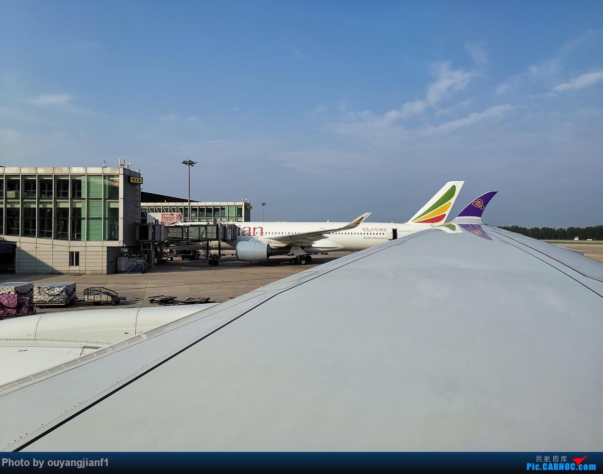 Re:[原创]终于有时间歇下来,可以总结一下2019年飞机游记了,第四段,十七天八国十一飞,跨越欧洲、非洲大陆,偶遇塞尔维亚篮球队,探秘古埃及!解锁塞尔维亚航、爱琴海、埃及航 AIRBUS A350-900 HS-THE 中国北京首都国际机场