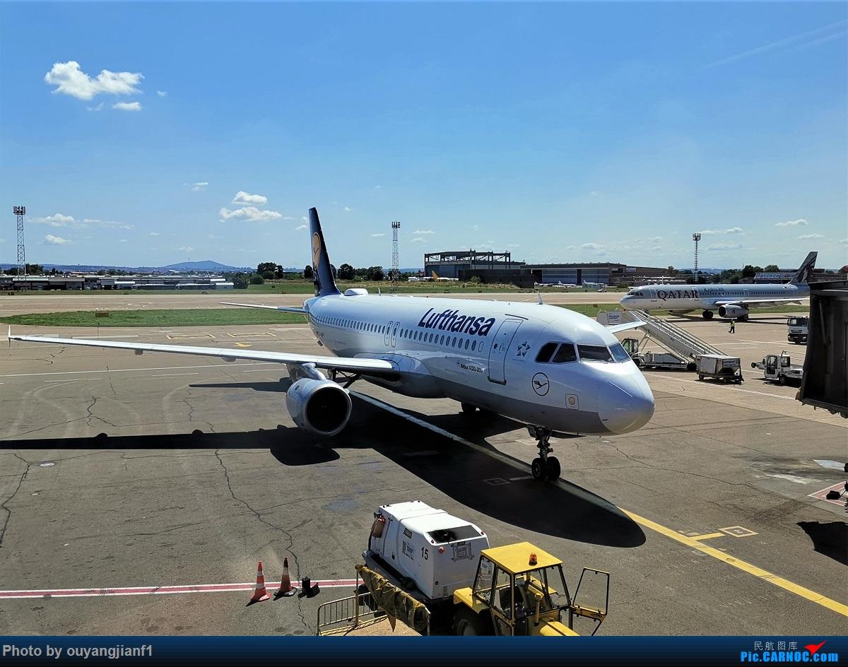 Re:[原创]终于有时间歇下来,可以总结一下2019年飞机游记了,第四段,十七天八国十一飞,跨越欧洲、非洲大陆,偶遇塞尔维亚篮球队,探秘古埃及!解锁塞尔维亚航、爱琴海、埃及航 AIRBUS A320-200 D-AIPY 塞尔维亚共和国贝尔格莱德尼古拉·特斯拉机场