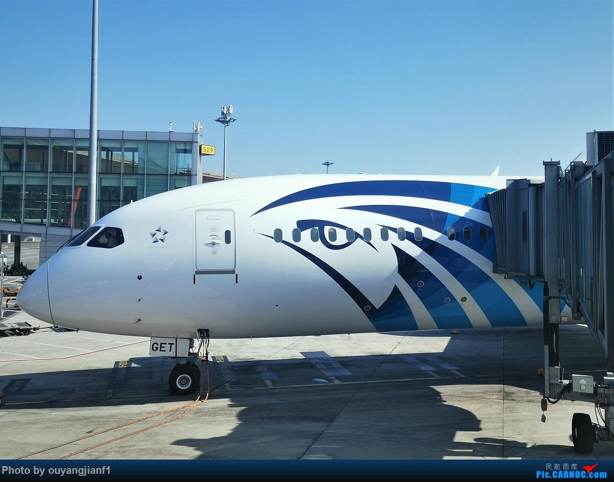 Re:[原创]终于有时间歇下来,可以总结一下2019年飞机游记了,第四段,十七天八国十一飞,跨越欧洲、非洲大陆,偶遇塞尔维亚篮球队,探秘古埃及!解锁塞尔维亚航、爱琴海、埃及航 BOEING 787-9 SU-GET 中国北京首都国际机场