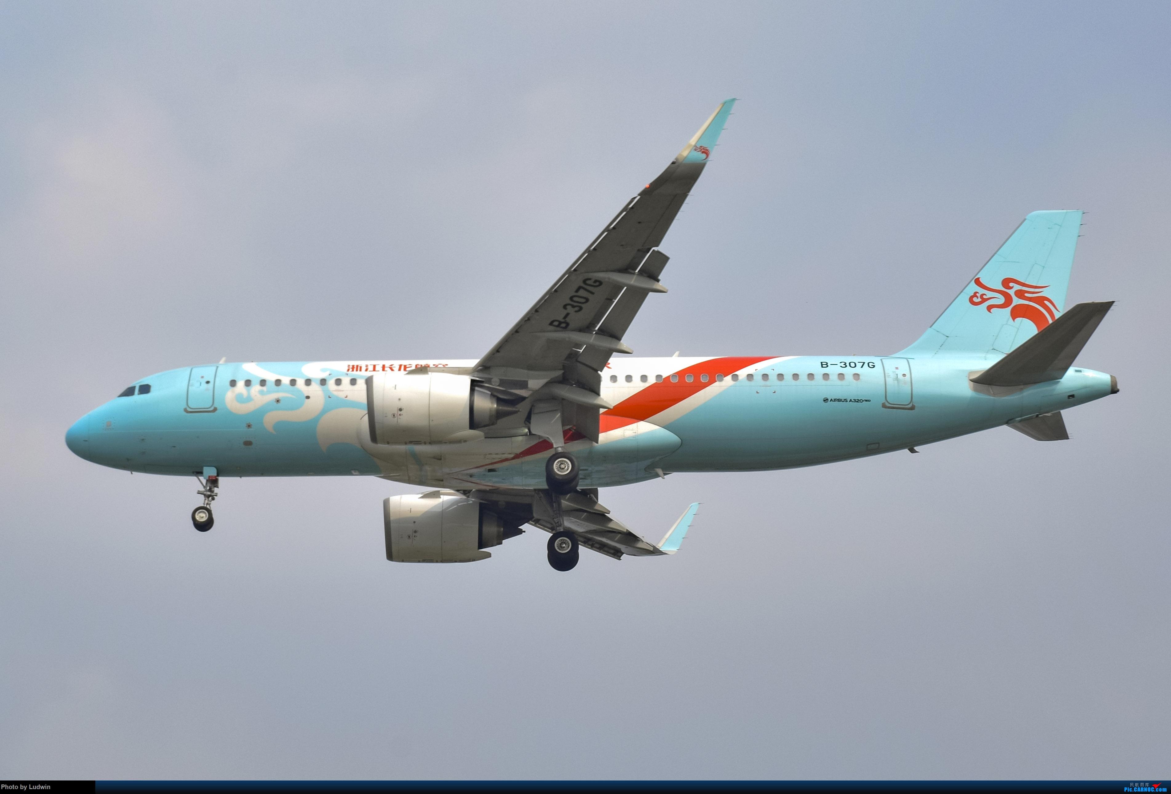 Re:[原创]没有地景系列 AIRBUS A320NEO B-307G 中国重庆江北国际机场