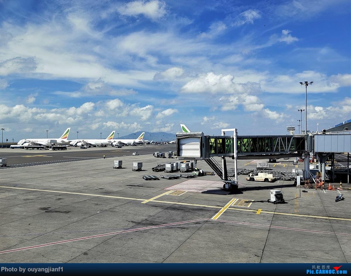 Re:[原创]终于有时间歇下来,可以好好总结一下2019年飞行游记了,第五段:一周之内的中东非洲之行,体验真土豪科威特航空,奇葩航沙特航空,动荡之下造访埃塞俄比亚航空总部! BOEING 777-200LR ET-ANO 埃塞俄比亚亚的斯亚贝巴博莱机场 埃塞俄比亚亚的斯亚贝巴博莱机场