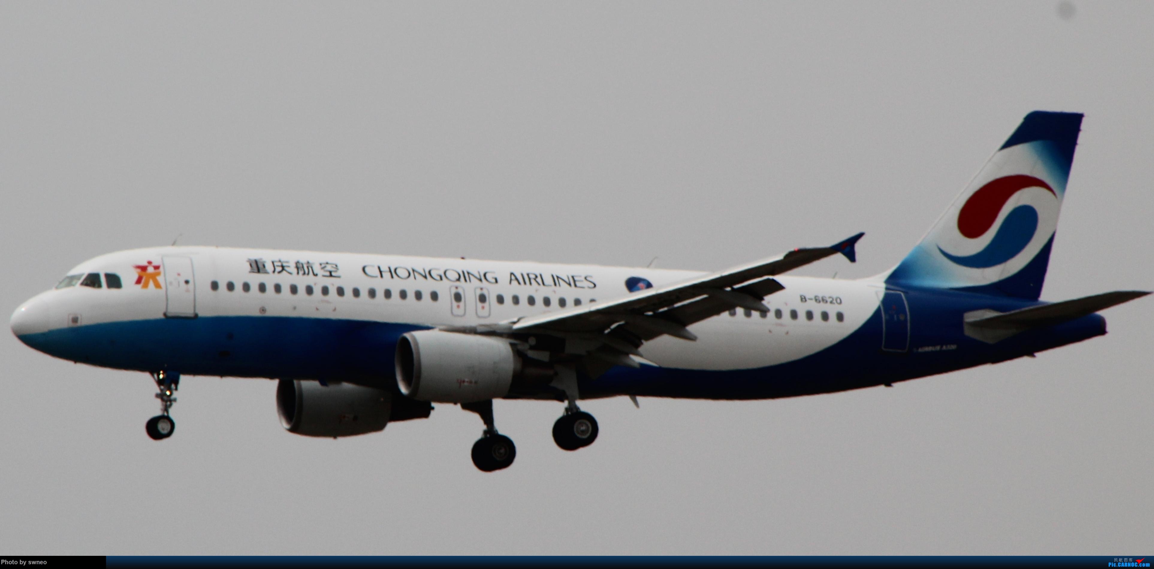 Re:青岛rw17土坡拍机 AIRBUS A320-200 B-6620 中国青岛流亭国际机场