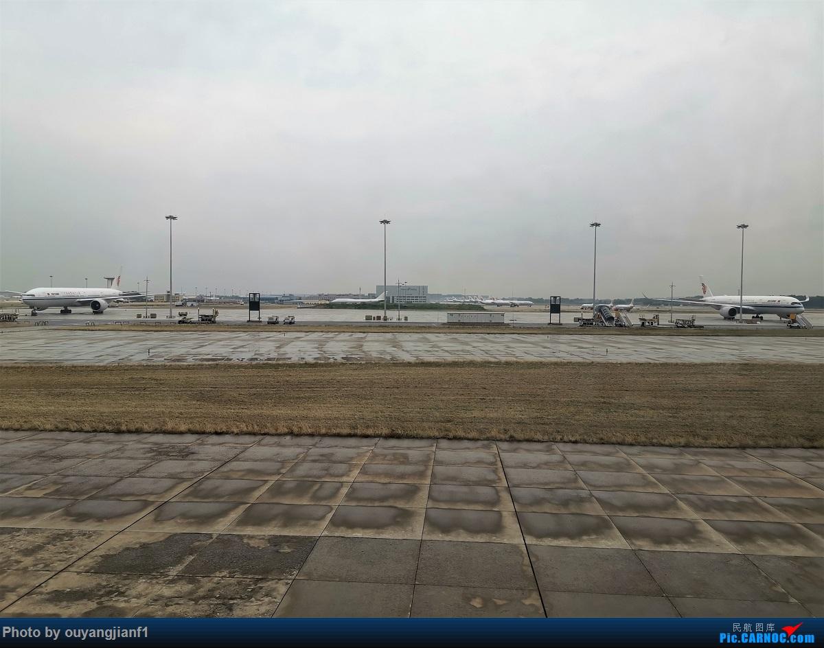 Re:[原创]终于有时间歇下来,可以好好总结一下2019年飞行游记了,第五段:一周之内的中东非洲之行,体验真土豪科威特航空,奇葩航沙特航空,动荡之下造访埃塞俄比亚航空总部! AIRBUS A330-300 B-5901 阿拉伯联合酋长国迪拜国际机场 中国北京首都国际机场