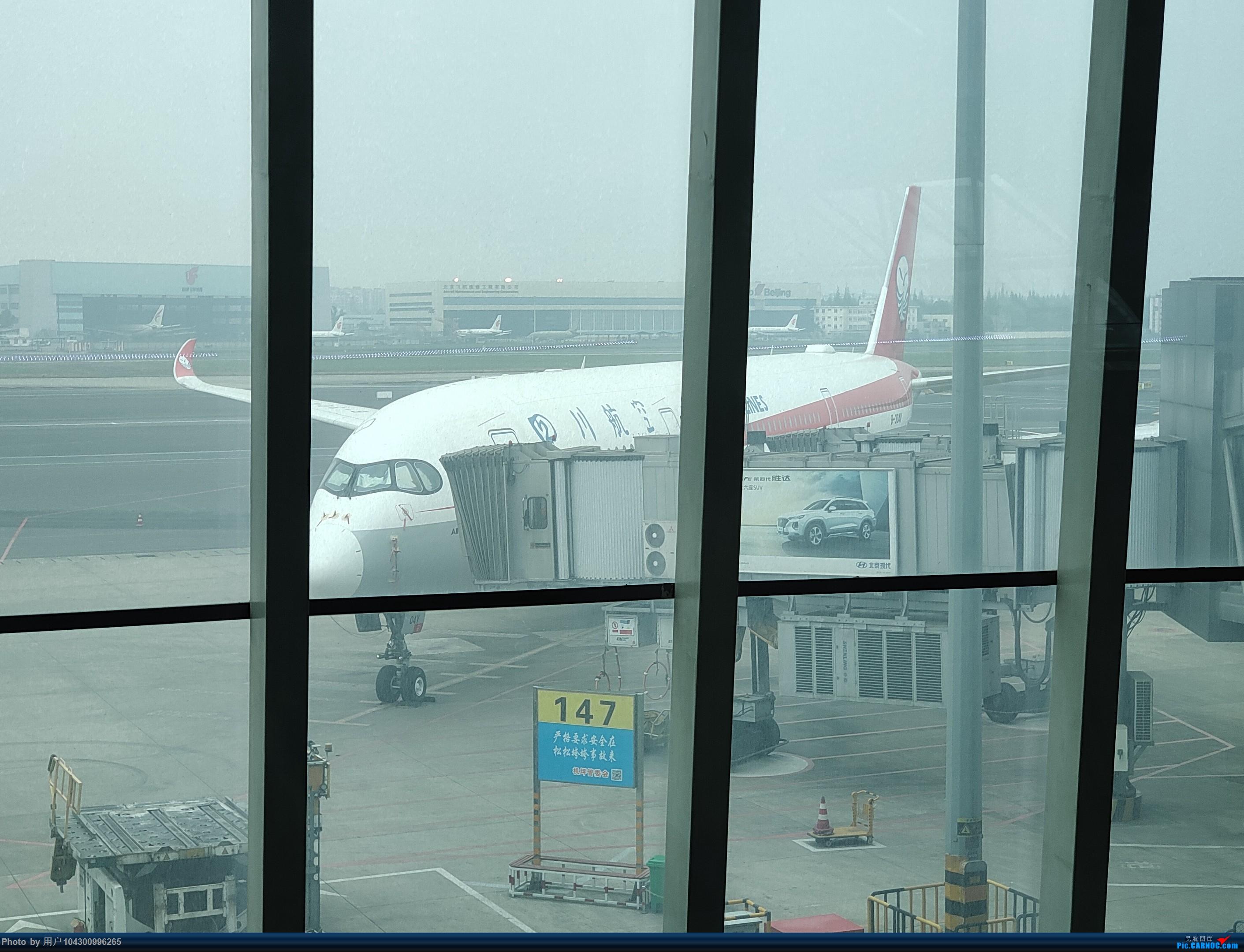 Re:[原创]DM游记之GY贵阳-成都往返(参观空港花田) AIRBUS A320NEO B-304Y 中国成都双流国际机场 中国成都双流国际机场