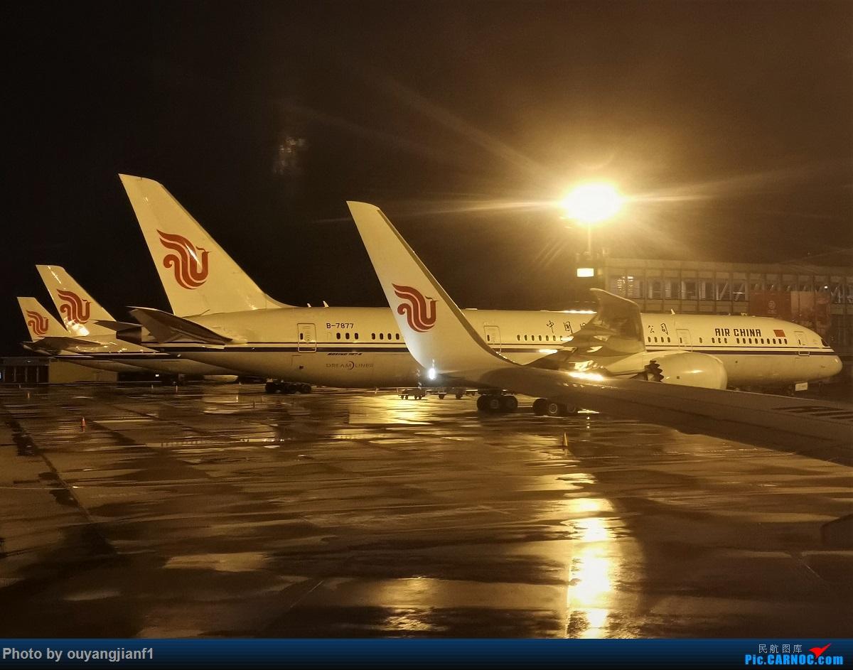 Re:[原创]2020年第一飞,赶在疫情全球蔓延前出去转一圈,看看冰封之下的贝加尔湖,会会老朋友法兰克福,跨过夕阳下的英吉利,感受爱尔兰的擎天柱,在PEK见证疫情之下的停机场 BOEING 787-9 B-7877 中国北京首都国际机场