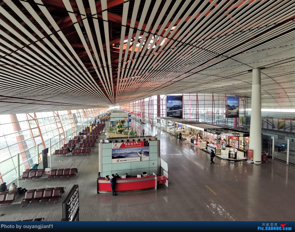 Re:[原创]2020年第一飞,赶在疫情全球蔓延前出去转一圈,看看冰封之下的贝加尔湖,会会老朋友法兰克福,跨过夕阳下的英吉利,感受爱尔兰的擎天柱,在PEK见证疫情之下的停机场    中国北京首都国际机场