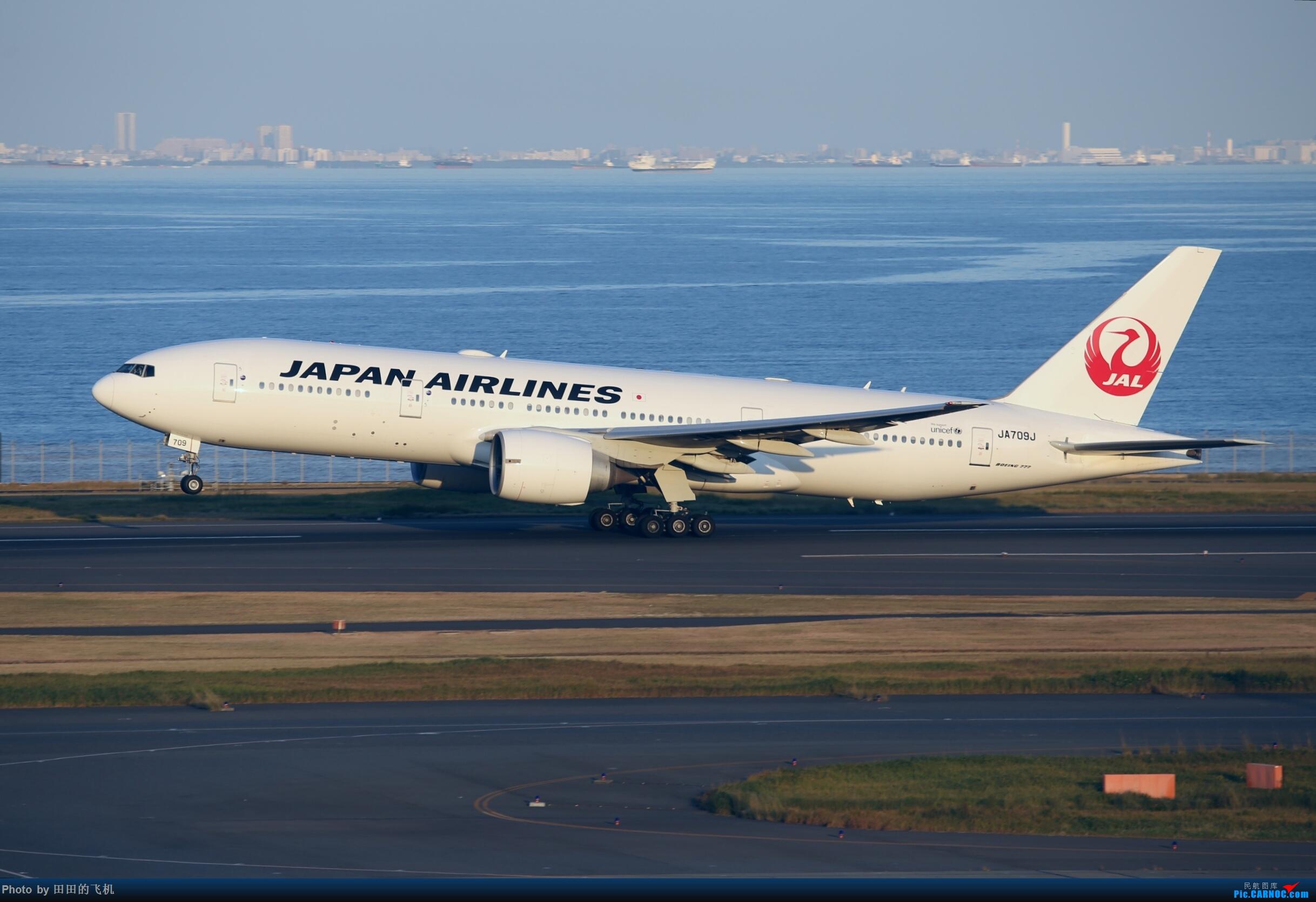 [原创]整理一下去年东京羽田机场拍的飞机 777-200 JA709J 东京羽田机场