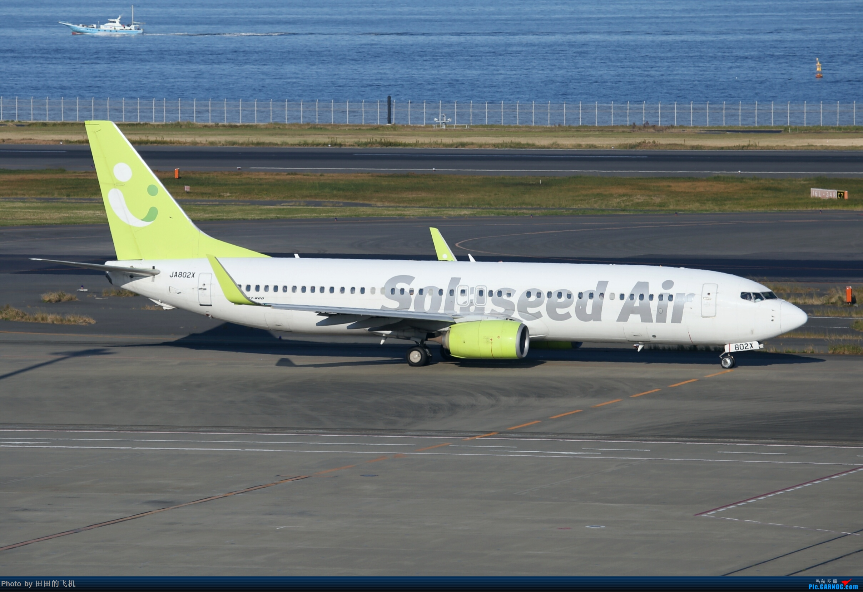 Re:[原创]整理一下去年东京羽田机场拍的飞机 737-800 JA802X 东京羽田机场