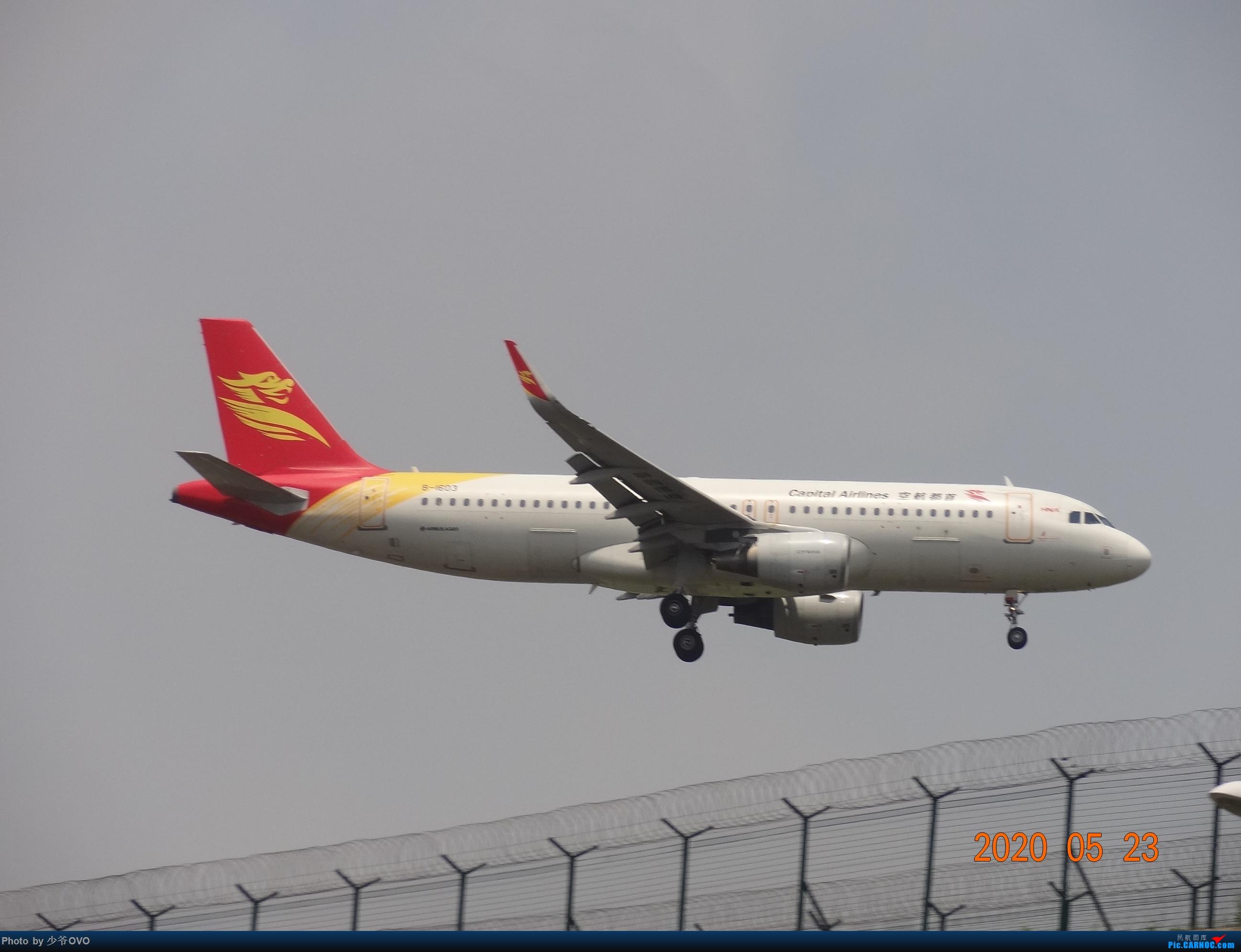 Re:[原创]CKG重庆江北机场拍机,爱CHINA77W AIRBUS A320-200 B-1603 重庆江北机场