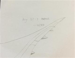 自己瞎畫的787機翼😅