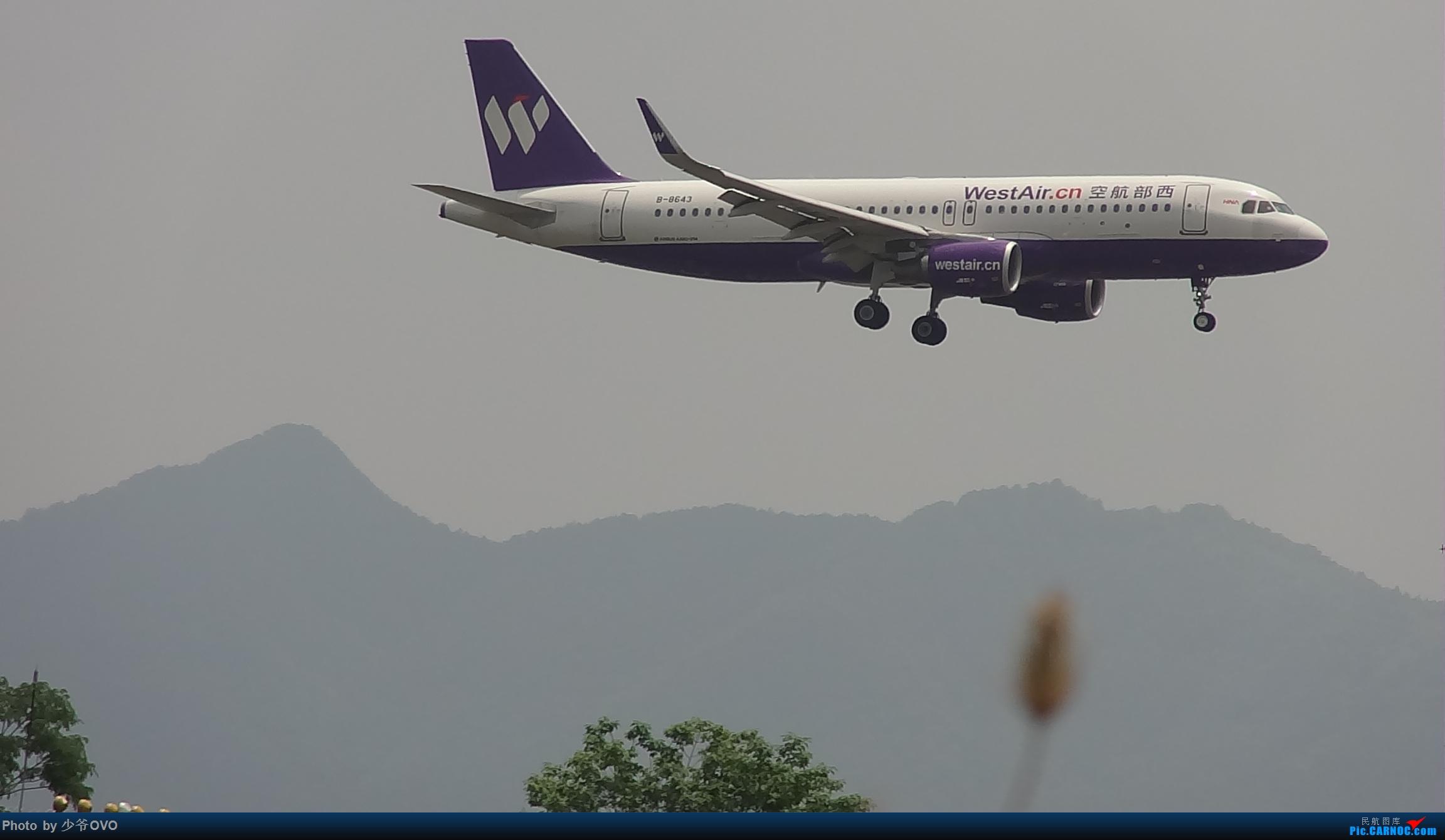 Re:[原创]Re:[原创]人生最后一个儿童节的CKG拍机,久违的胜安738 AIRBUS A320-200 B-8643 中国重庆江北国际机场