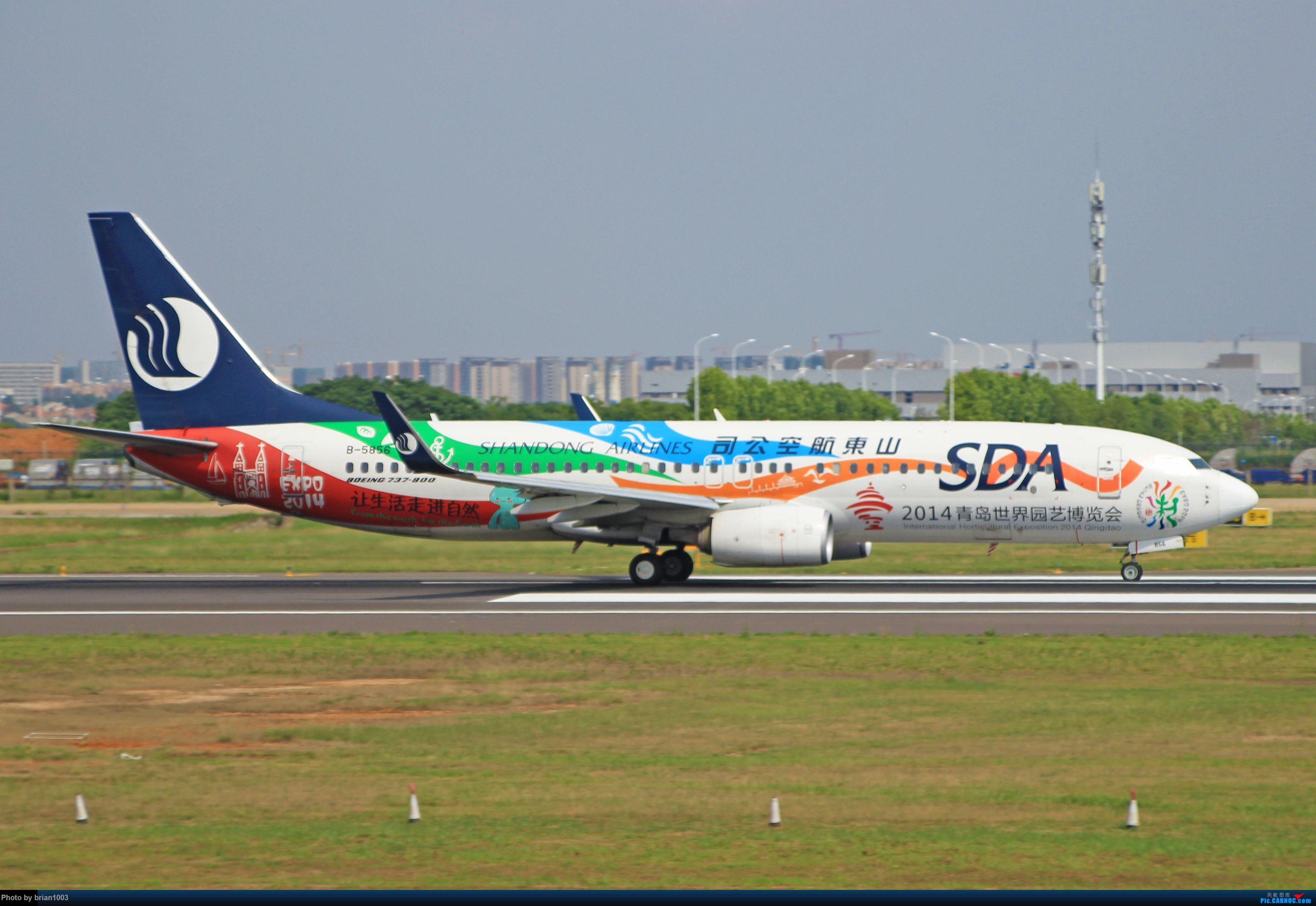 Re:[原创]WUH天河机场拍机之六月还有啥(X7家744F、天津航空333) BOEING 737-800 B-5856 中国武汉天河国际机场