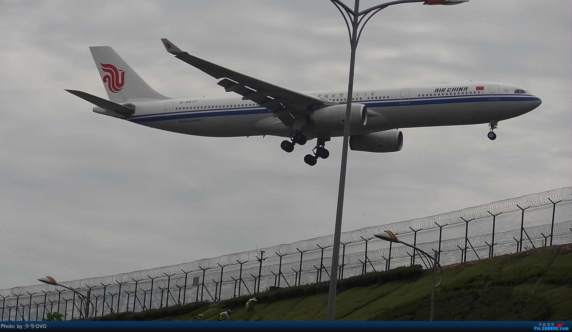 Re:[原创]CKG拍机,数码机最后的倔强 AIRBUS A330-300 B-8577 中国重庆江北国际机场