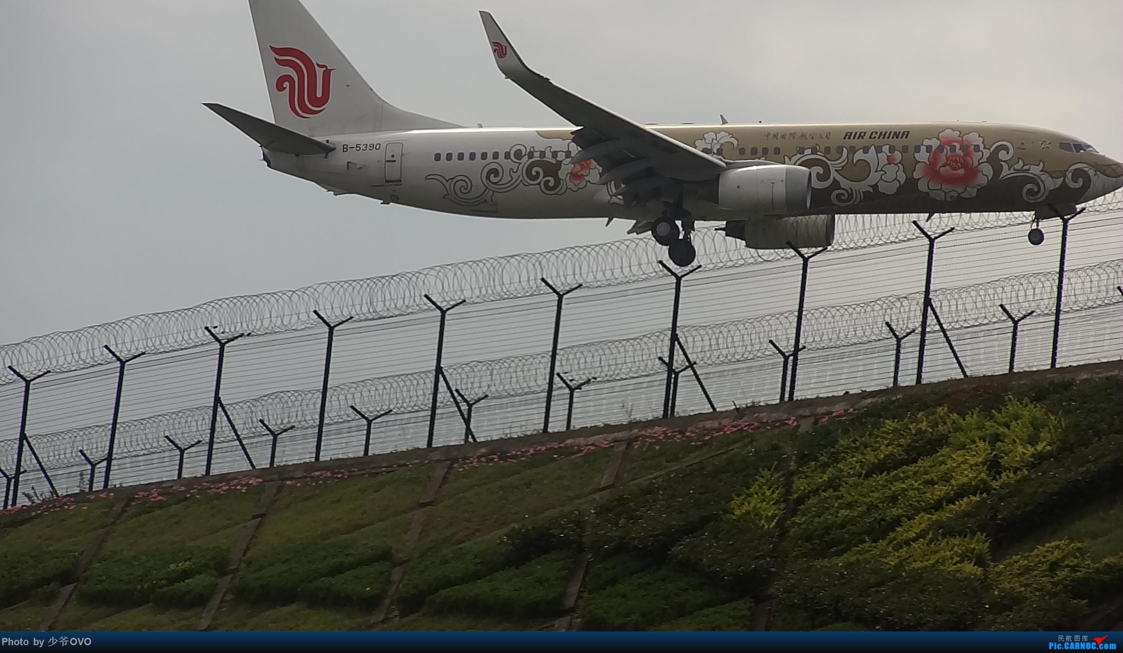 Re:[原创]CKG拍机,数码机最后的倔强 BOEING 737-800 B-5390 中国重庆江北国际机场