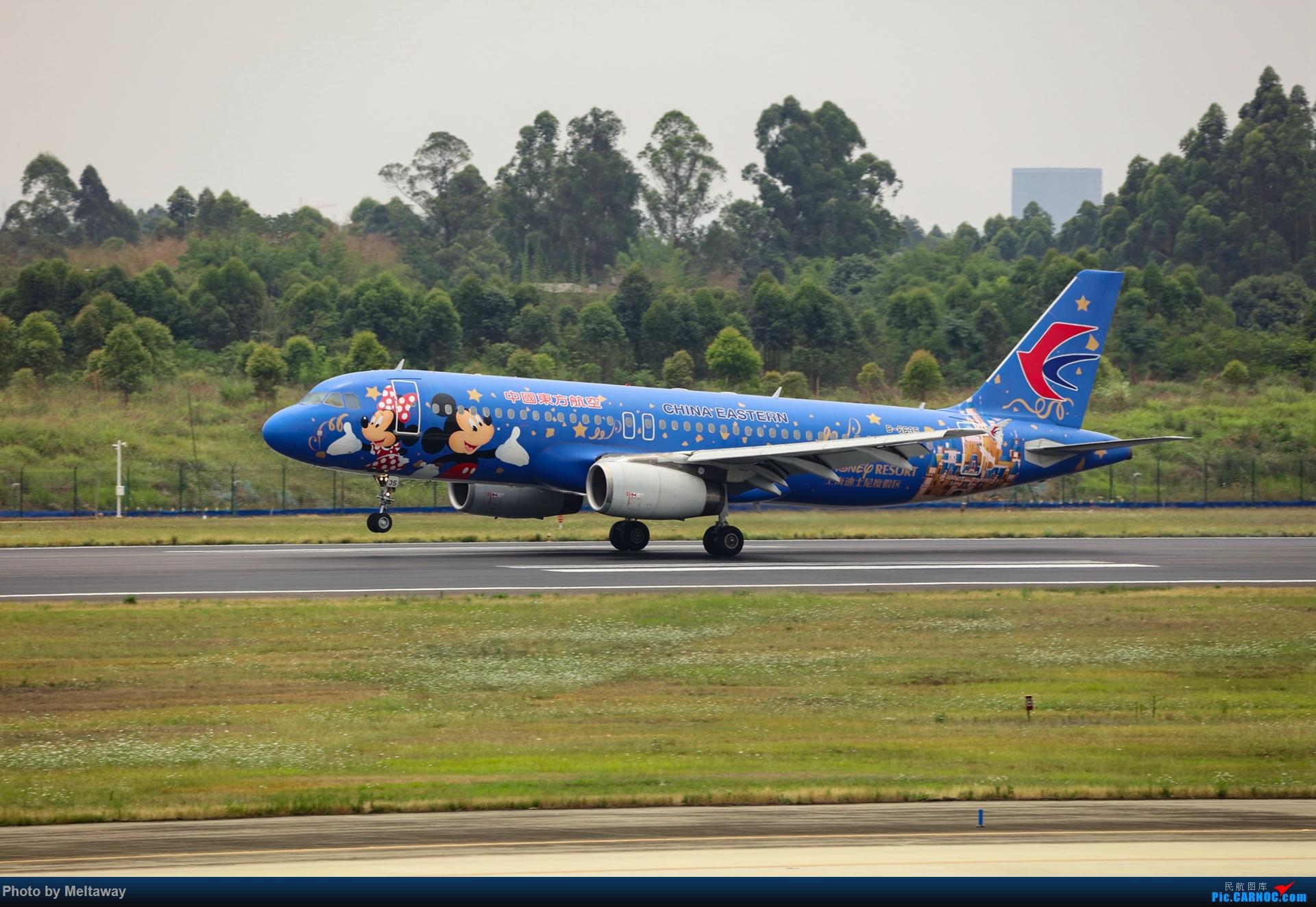 Re:[原创]东航 迪斯尼号 AIRBUS A320-200 B-6635 中国成都双流国际机场